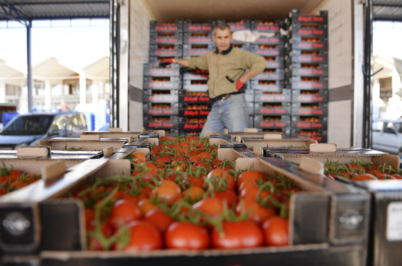 Russia was the top market as it received 61,781 tons of Turkish tomatoes worth $56 million in the first 11 months of 2020. (DHA Photo)