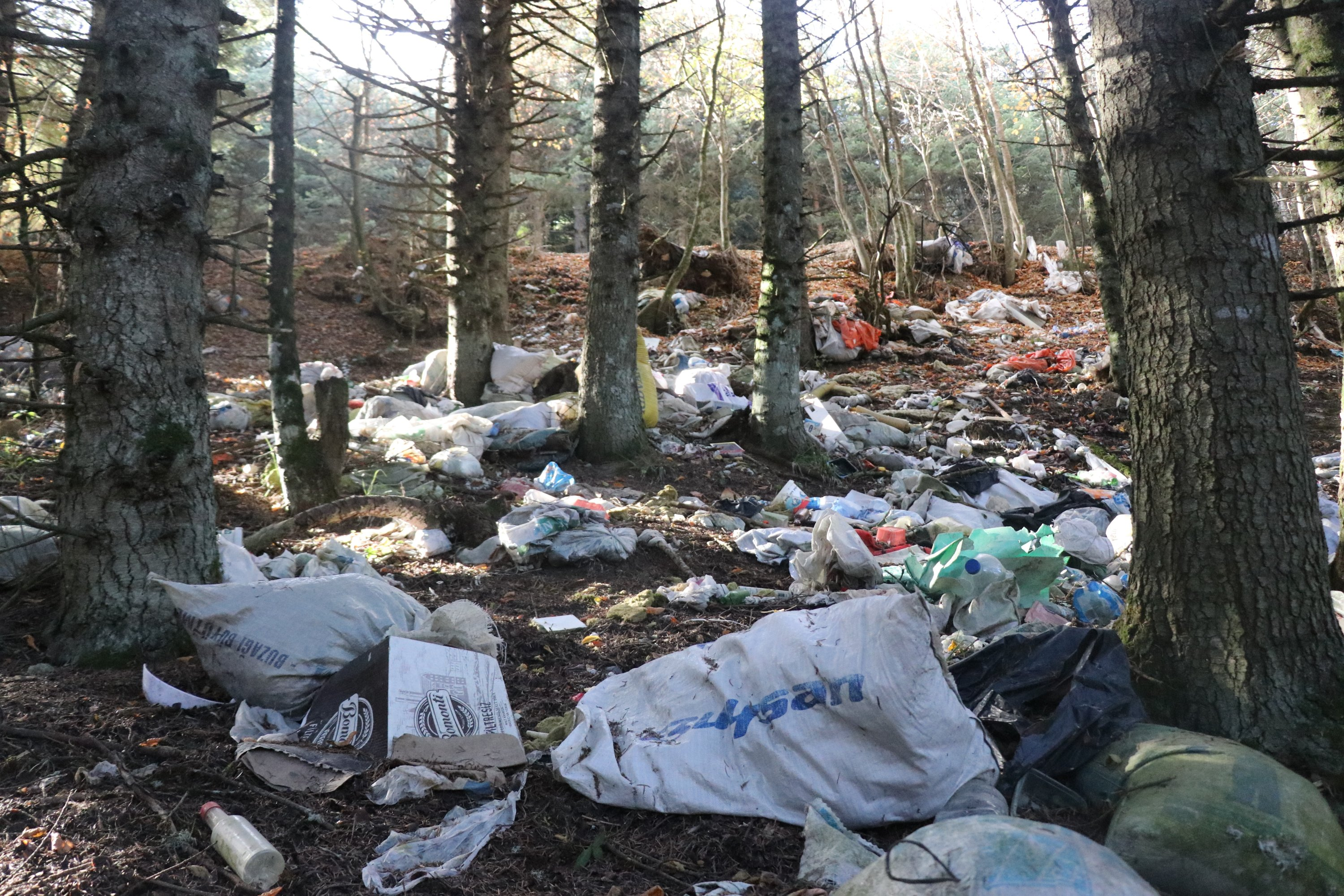 Heaps of trash left behind by picnickers are in a forest in Bolu, northwestern Turkey, amid the coronavirus pandemic, Nov. 30, 2020. (IHA Photo)