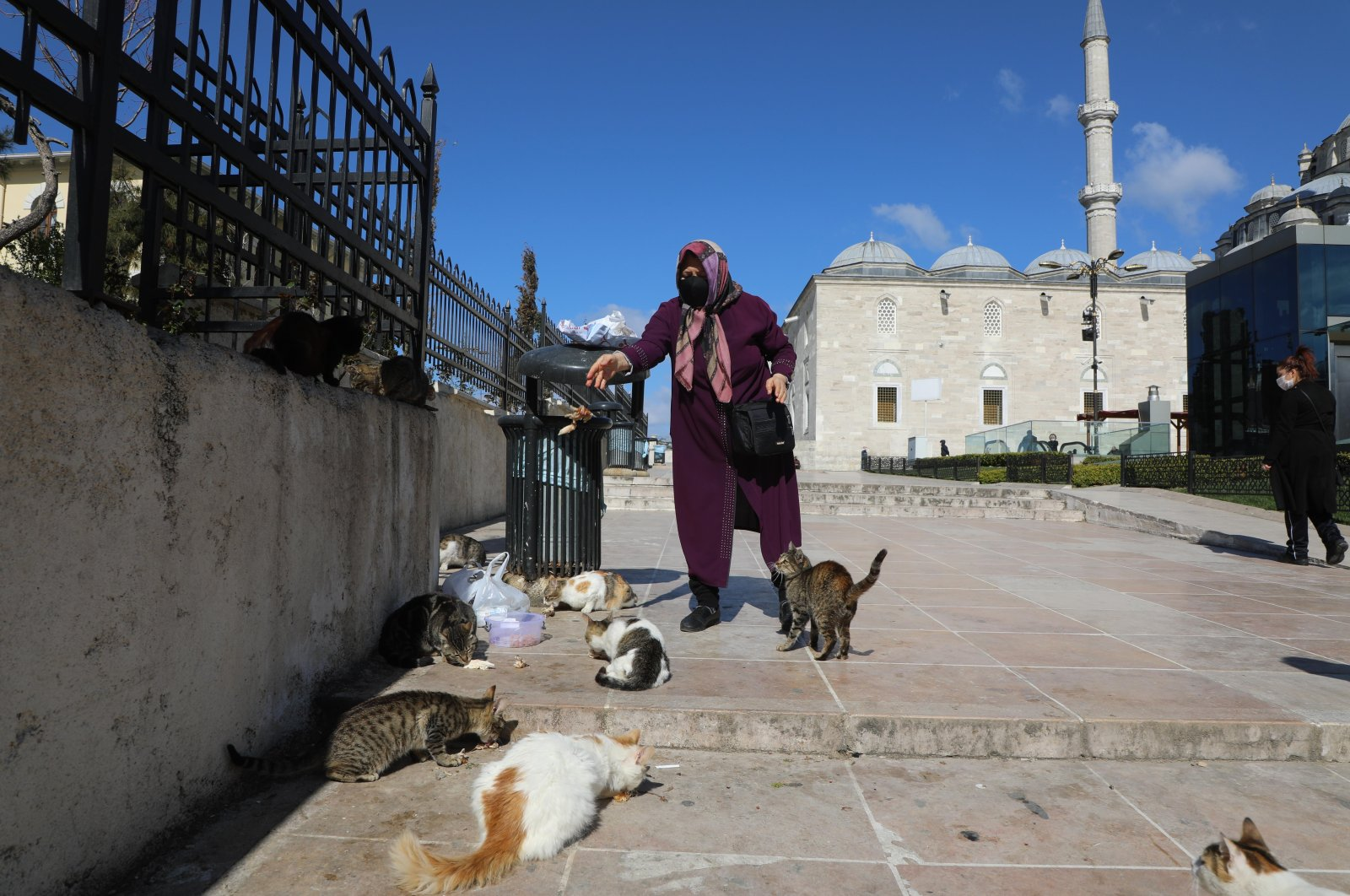 An old lady takes care of cats and puts food for them in the courtyard of the Fatih Mosque in Istanbul, Turkey, April 8, 2020. (Photo by Getty Images)
