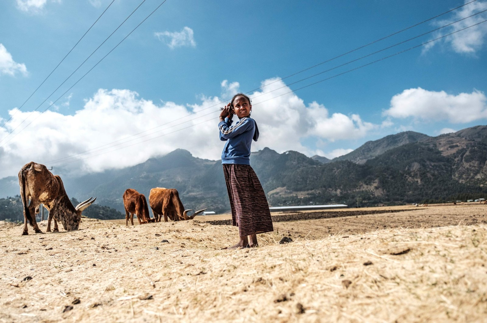 A young shepherd stands next to oxen in the town of Korem, north of Alamata, Ethiopia, Dec. 12, 2020. (AFP Photo)
