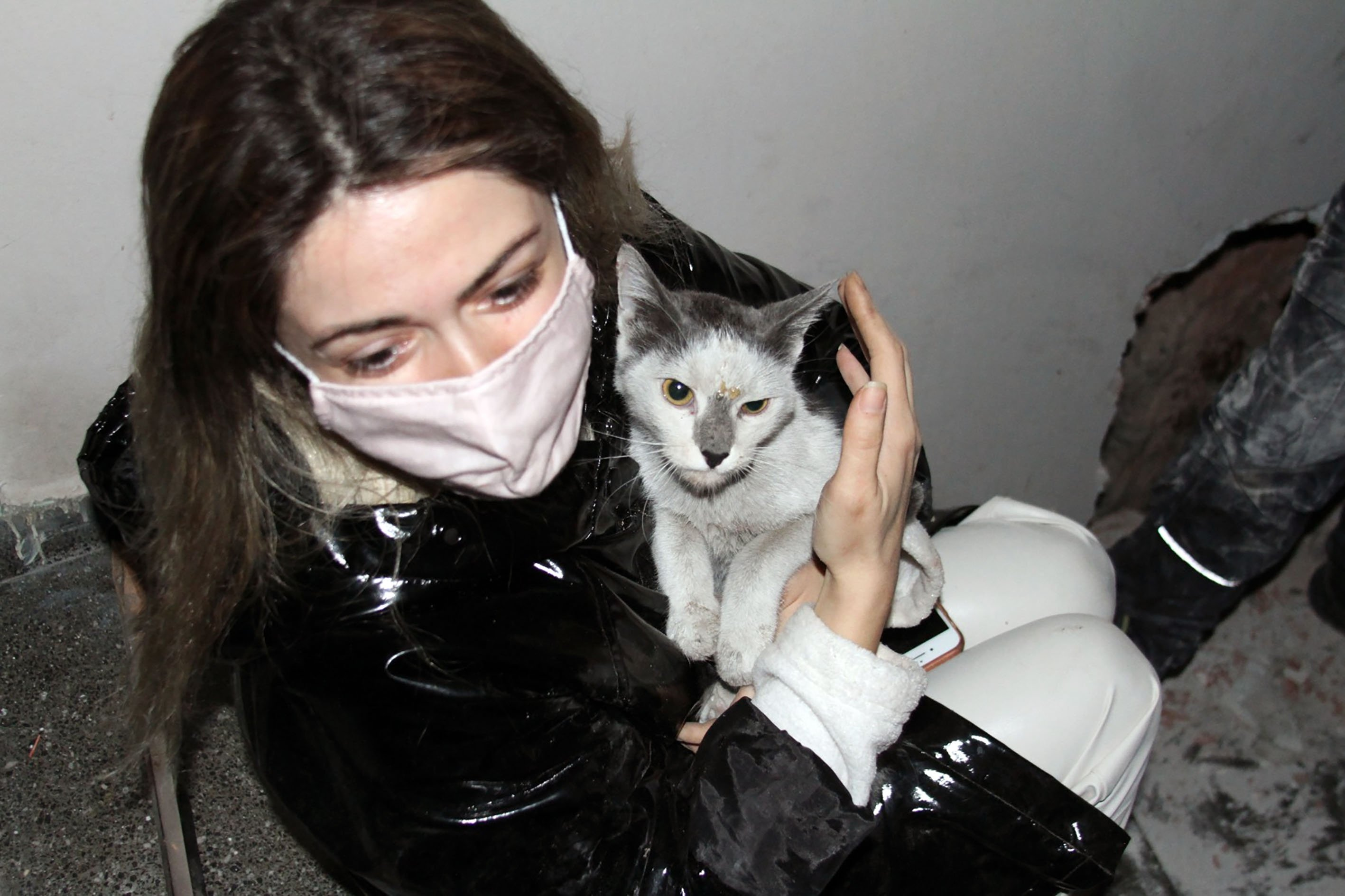 Cat who survived Izmir earthquake reunites with owner after miraculous rescue