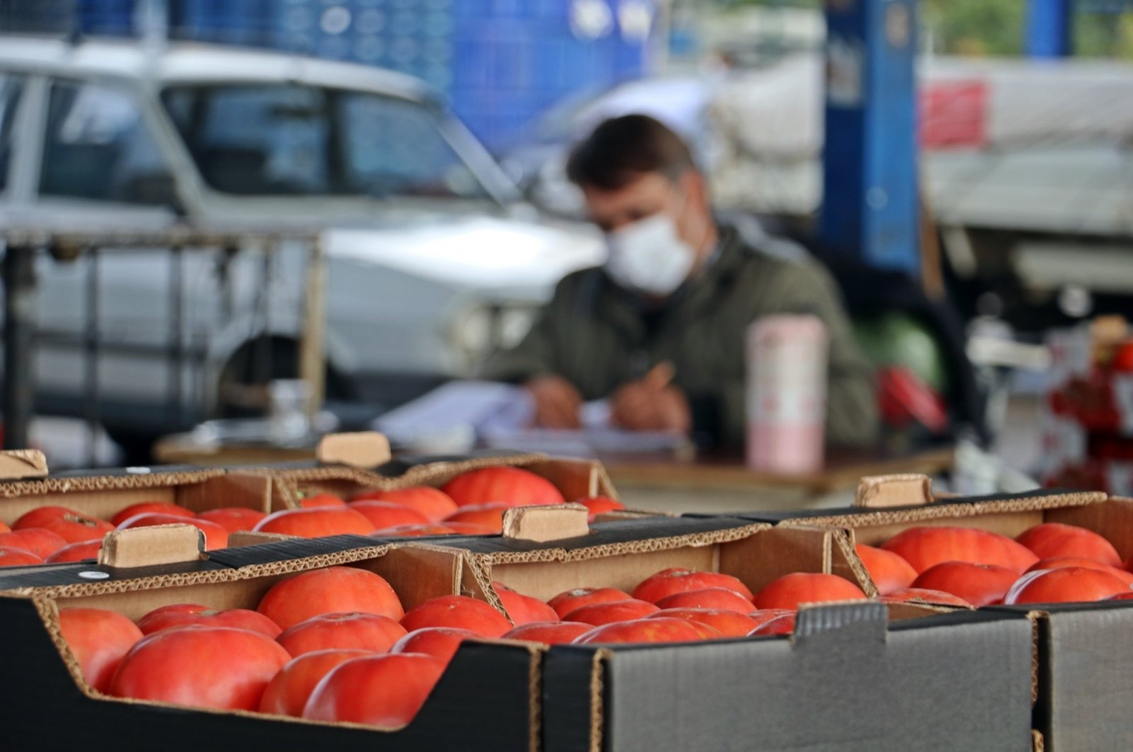 Russia received 61,781 tons of Turkish tomatoes worth $56 million in the first 11 months of 2020, making it the top market. (IHA Photo)