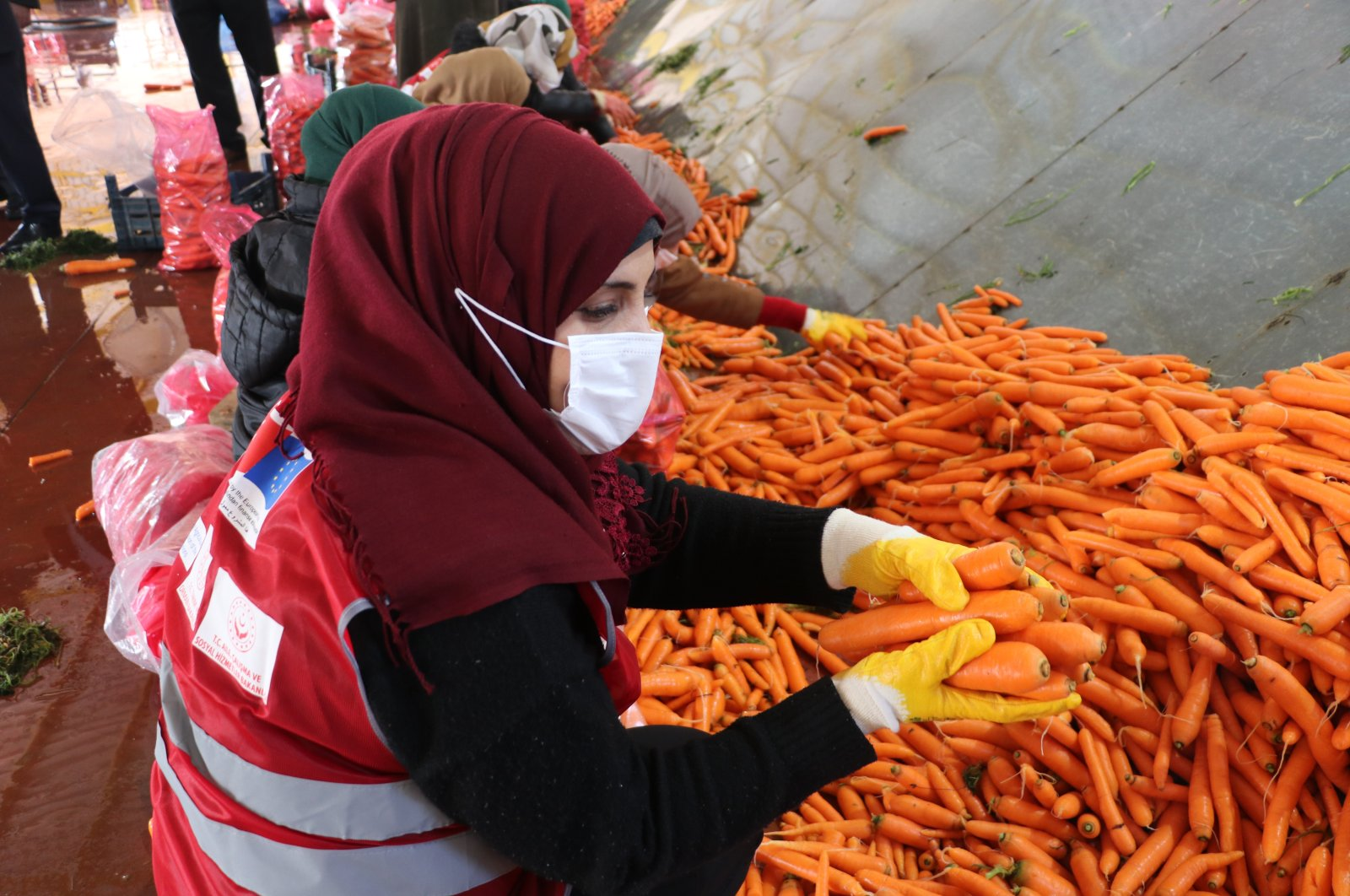 A woman practices carrot packaging at the school in Hatay, southern Turkey, Jan. 4, 2021. (AA Photo)