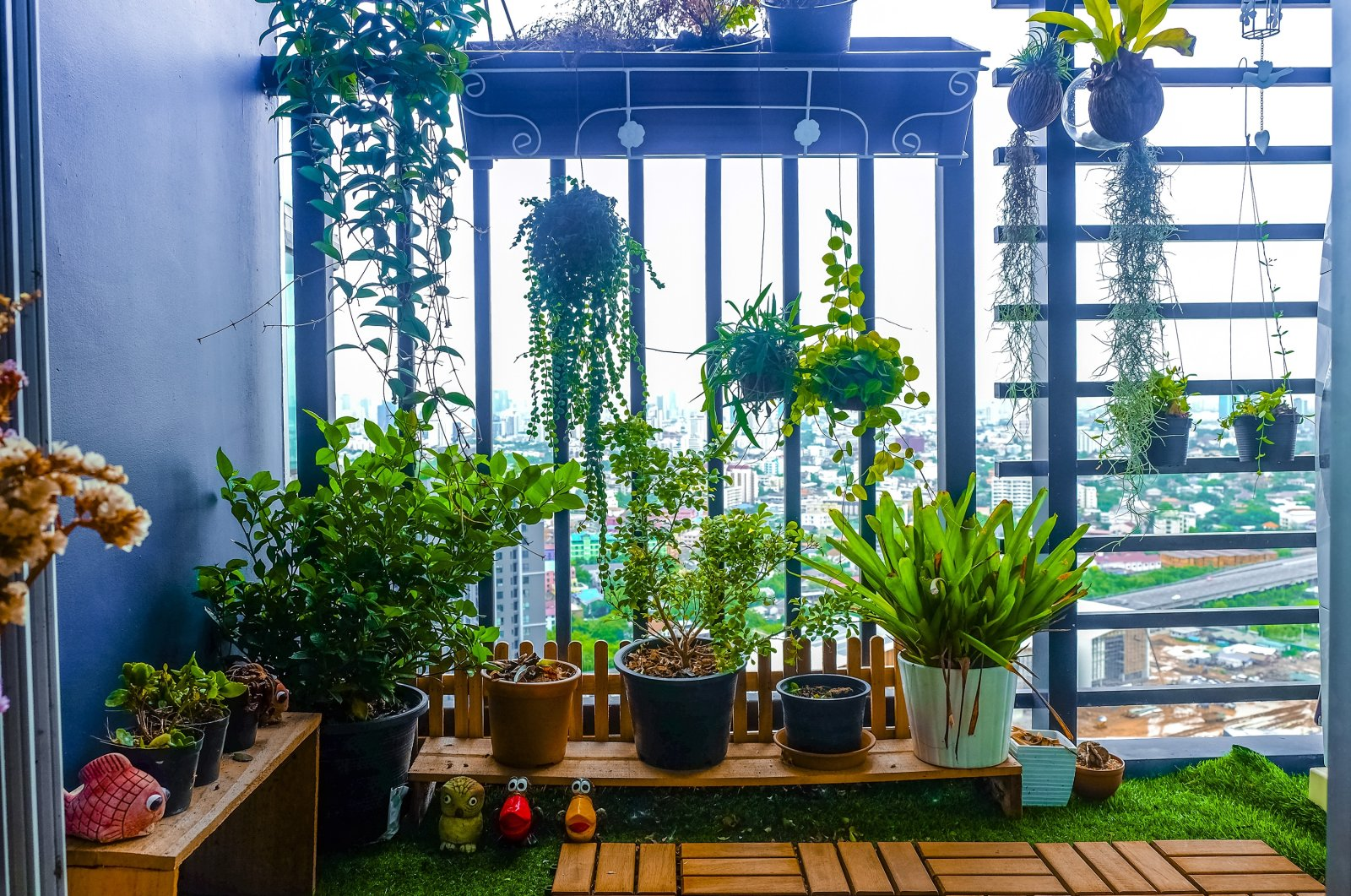 If you have a balcony that has little to no sun, it doesn't mean you can't have a green paradise. (Shutterstock Photo)