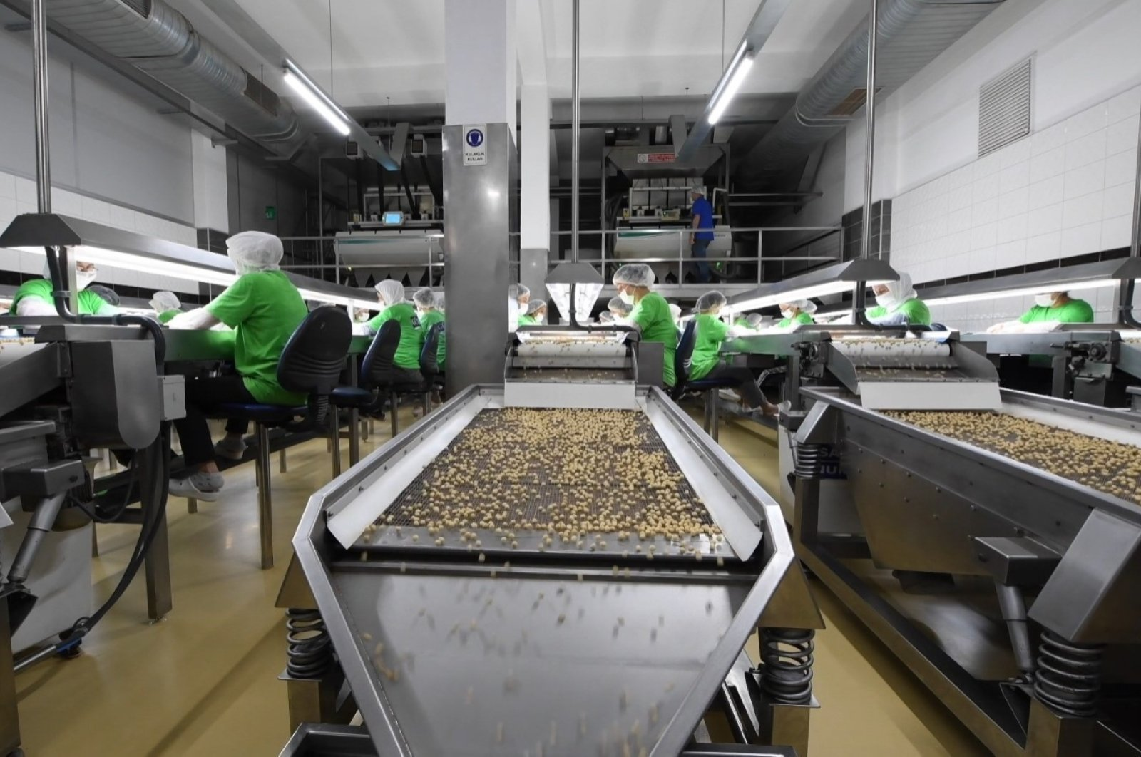 Workers are seen at a hazelnut processing plant in the Black Sea province of Ordu in northern Turkey, Jan. 6, 2021. (IHA Photo)