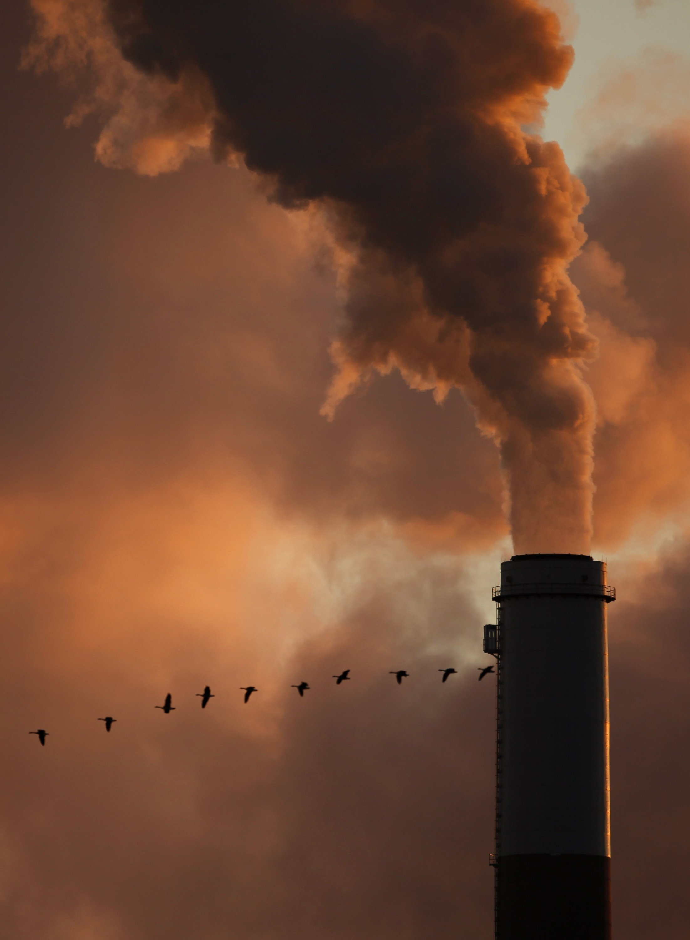 This Jan. 10, 2009, file photo shows a flock of geese flying past a smokestack at the Jeffrey Energy Center coal power plant near Emmitt, Kansas, U.S. (AP Photo)