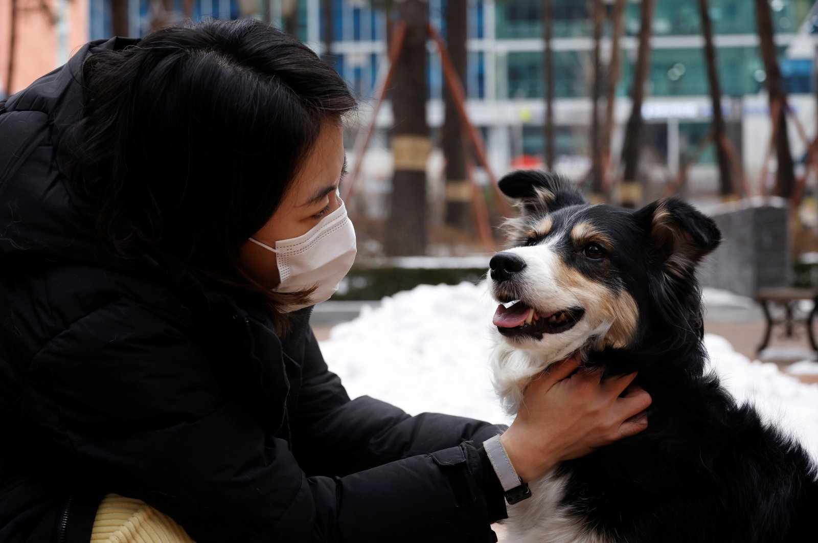 Moon Sae-mi pets her dog Godot as they demonstrate Petpuls, an AI-powered smart dog collar, in Seoul, South Korea, Jan. 11, 2021. (Reuters Photo)