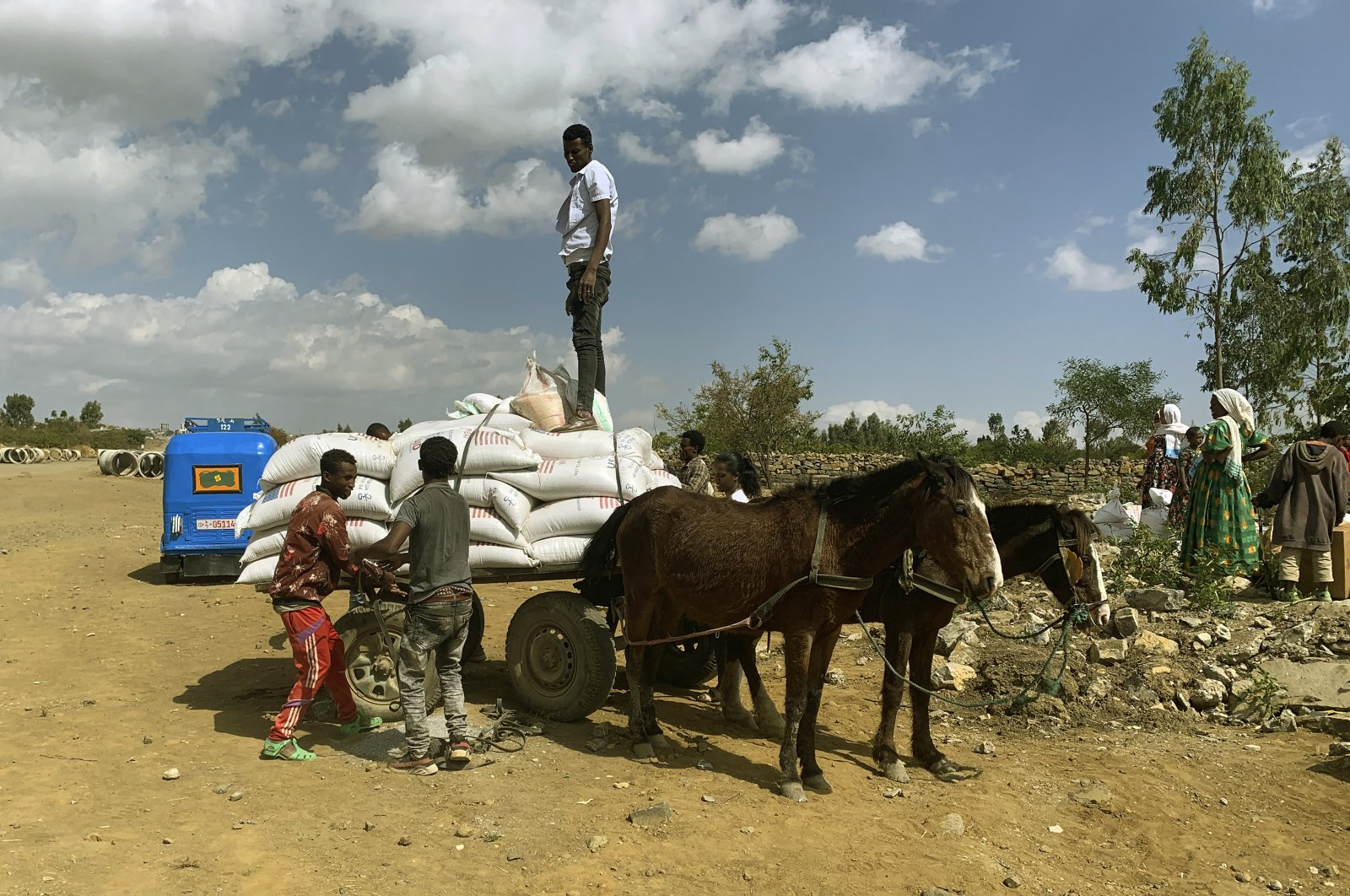 People affected by the conflict in Tigray load food aid provided by humanitarian agencies onto a donkey cart to be transported to their home, outside Mekele, Ethiopia, Jan. 12, 2021. (AP Photo)