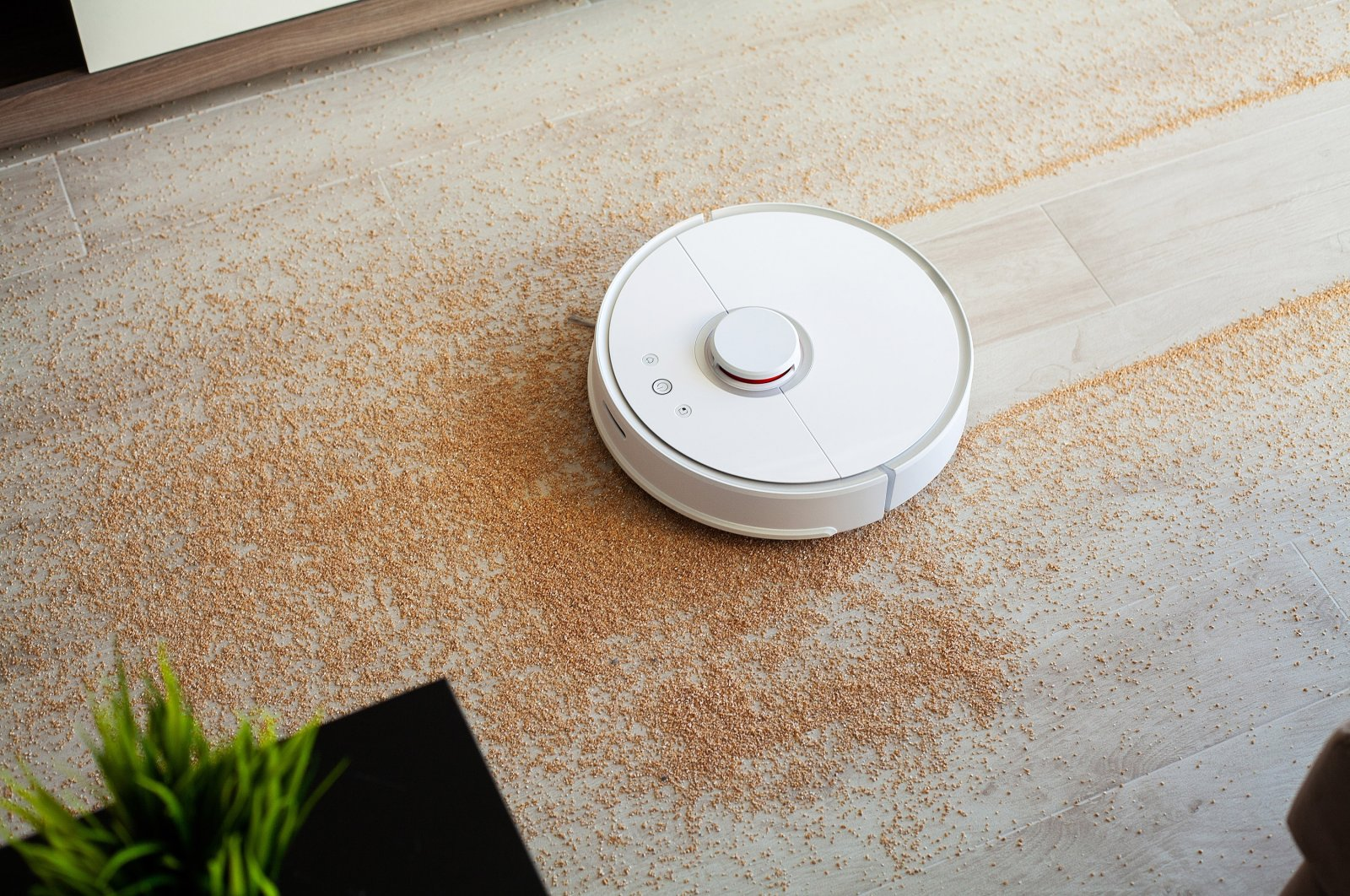 Robot vacuums are perfect for picking up crumbs and sweeping up dust on a daily basis but may not be the best for a deeper clean. (Shutterstock Photo)