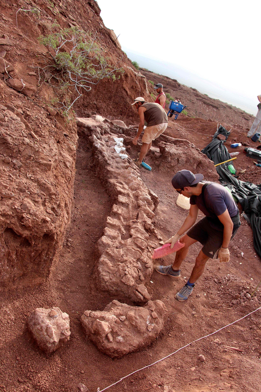 Auf diesem Foto, das von der CTyS-UNLaM Science Outreach Agency veröffentlicht wurde, arbeiten Paläontologen während einer Ausgrabung, bei der 98 Millionen Jahre alte Fossilien in der Candeleros-Formation im Neuquen River Valley im Südwesten Argentiniens am 20. Januar 2021 gefunden wurden. ( Jose Luis Carballido / CTyS-UNLaM über AFP)