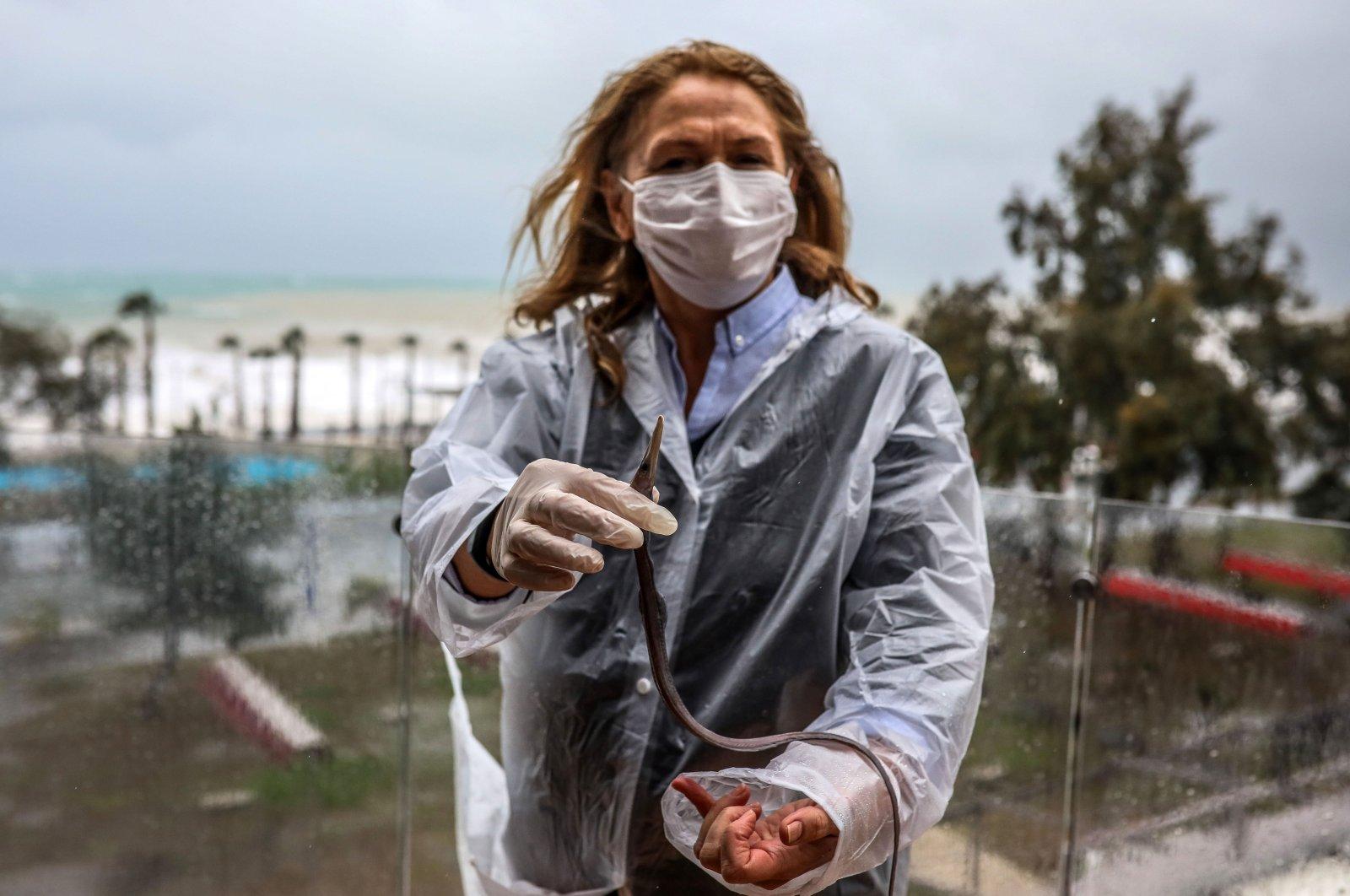 Kadriye Bahadır with the fish that landed on her balcony, Antalya, southern Turkey, Jan. 27, 2021. (DHA Photo)