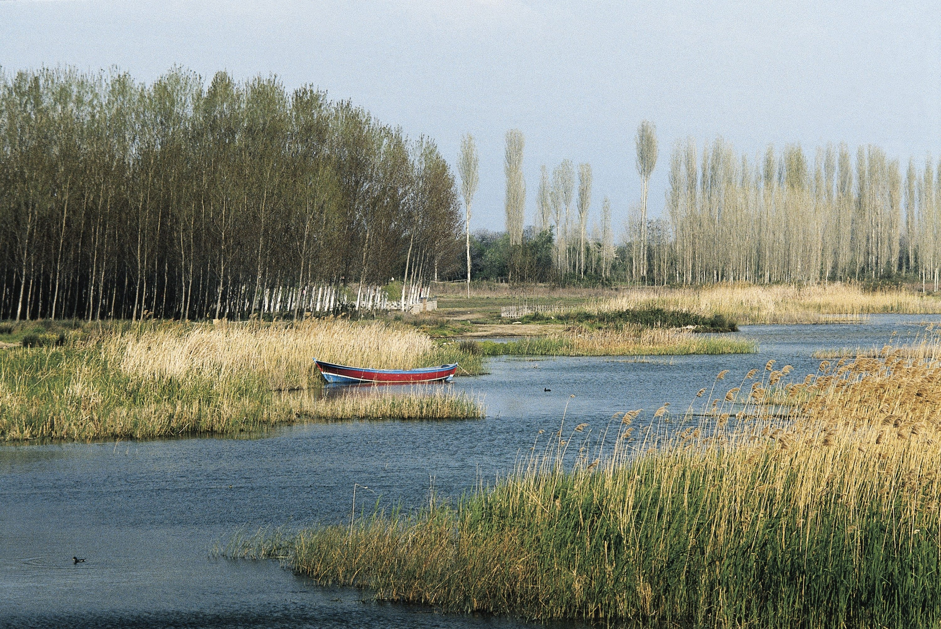 Lake Iznik offers visitors the chance for a serene boat trip amid nature in Bursa, northwestern Turkey. (Getty Images)