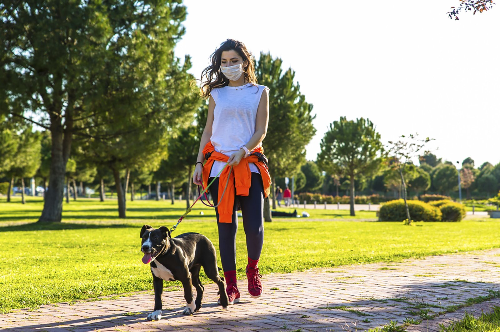 A woman wearing a mask walks her dog in a park, Dec. 26, 2020. (Getty Images)