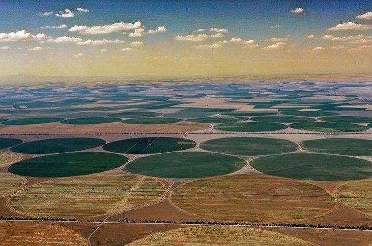 A view of fields in the Kadınhanı district, in Konya, central Turkey, July 18, 2020. (AA PHOTO)