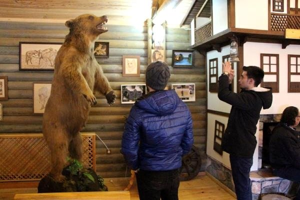 People take photos of a stuffed bear at a museum in Bolu, northern Turkey, Dec. 20, 2015. (DHA PHOTO)