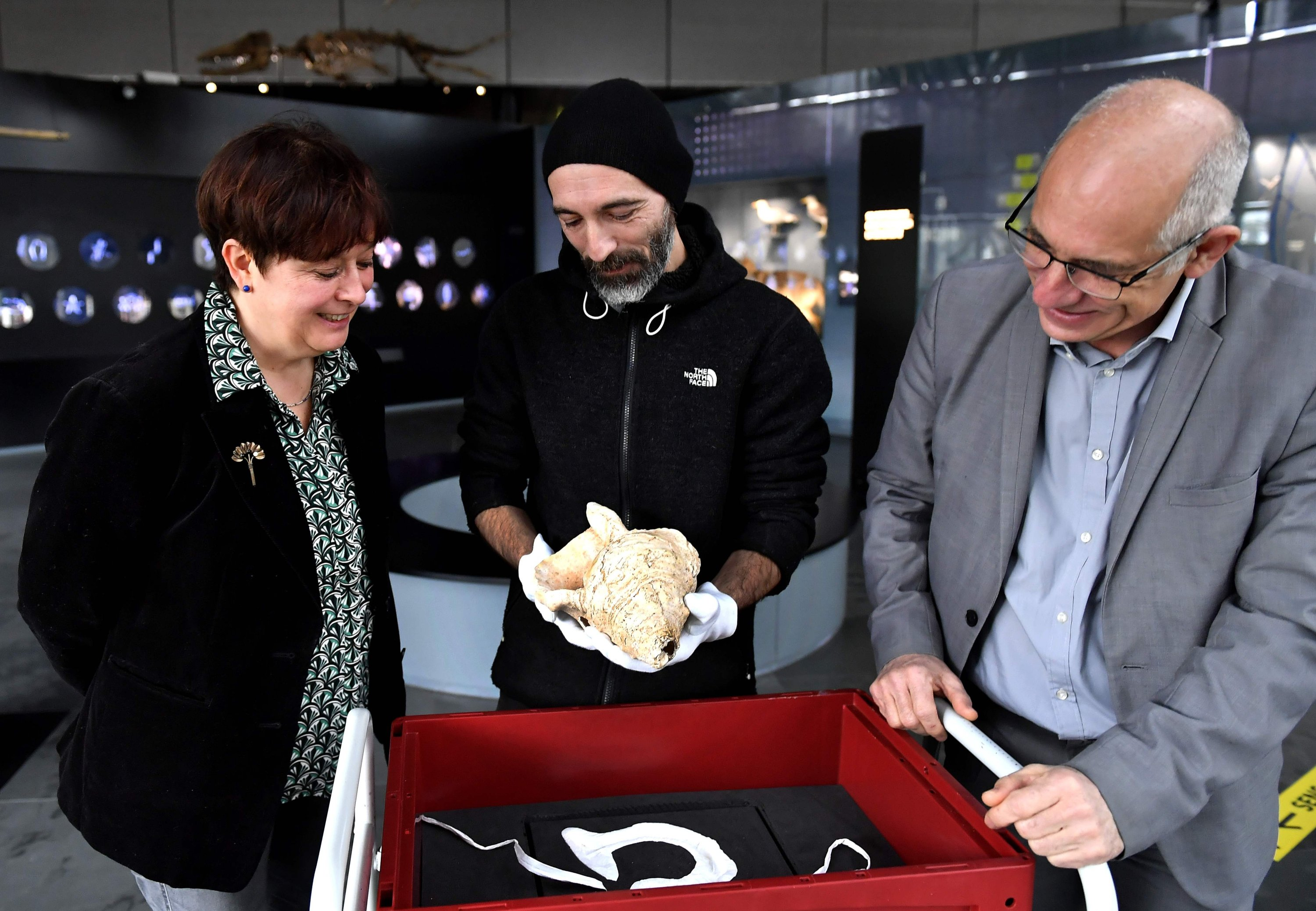 French director of the Museum of Natural History, Francis Duranthon (R), assistant Guillaume Fleury, and archaeologist and CNRS researcher Carole Fritz (L) stand by the shell at the museum in Toulouse on Feb. 10, 2021. (AFP Photo)