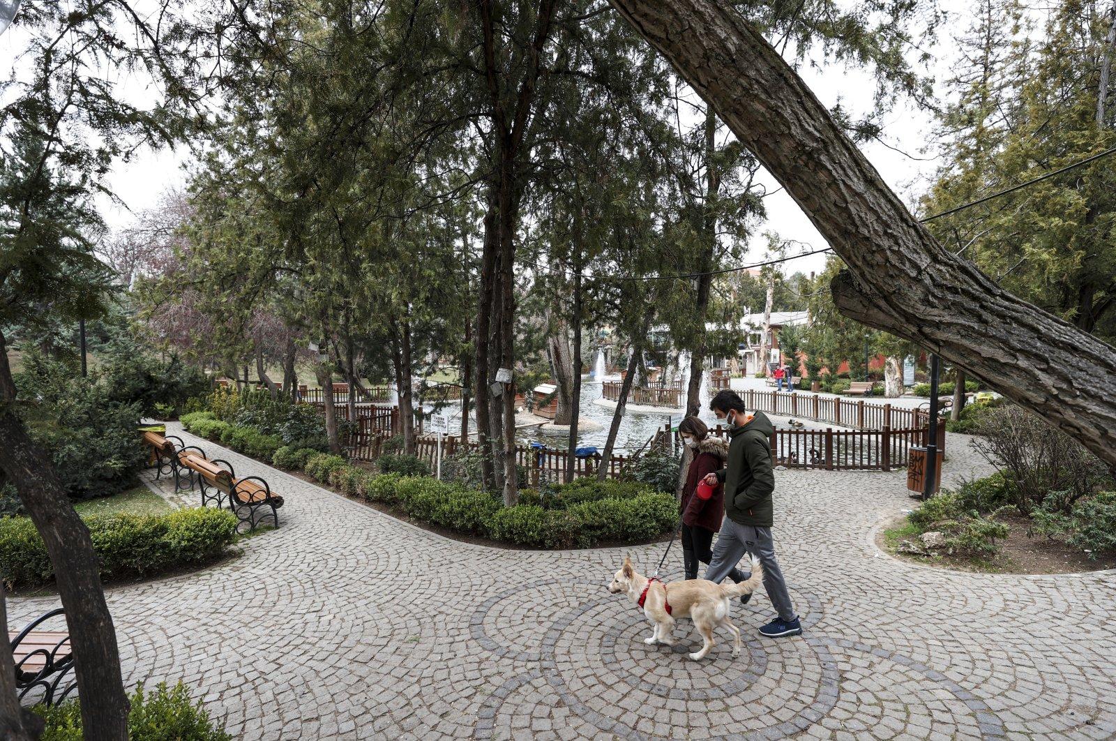 A man and a woman wearing protective masks walk a dog at a park in the capital Ankara, Turkey, Feb. 14, 2021. (AA PHOTO)