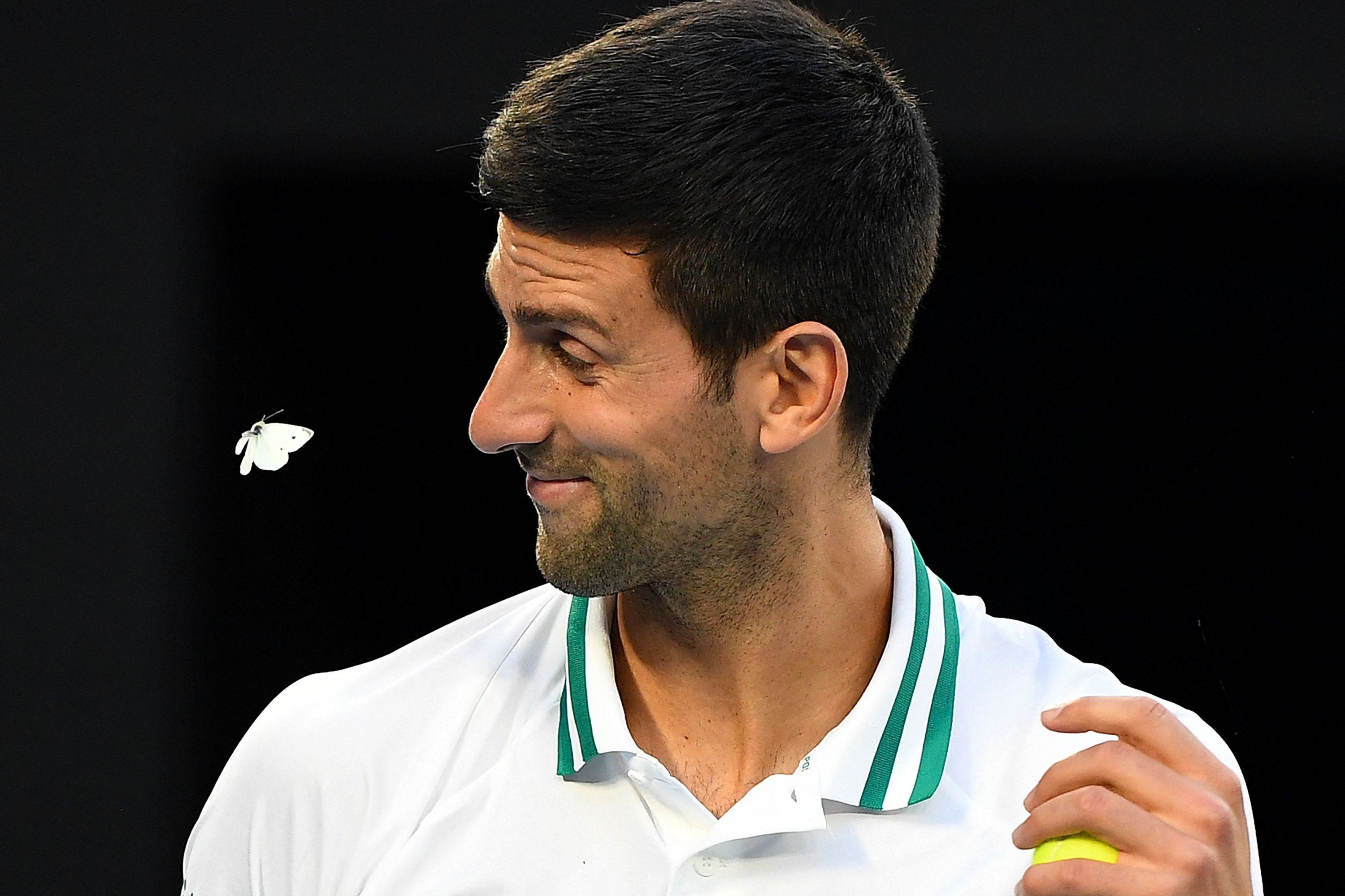 Novak Djokovic of Serbia deals with a butterfly as he prepares to serve against Russia's Aslan Karatsev during their Australian Open men's singles semifinal in Melbourne, Australia, Feb. 18, 2021. (AFP Photo)