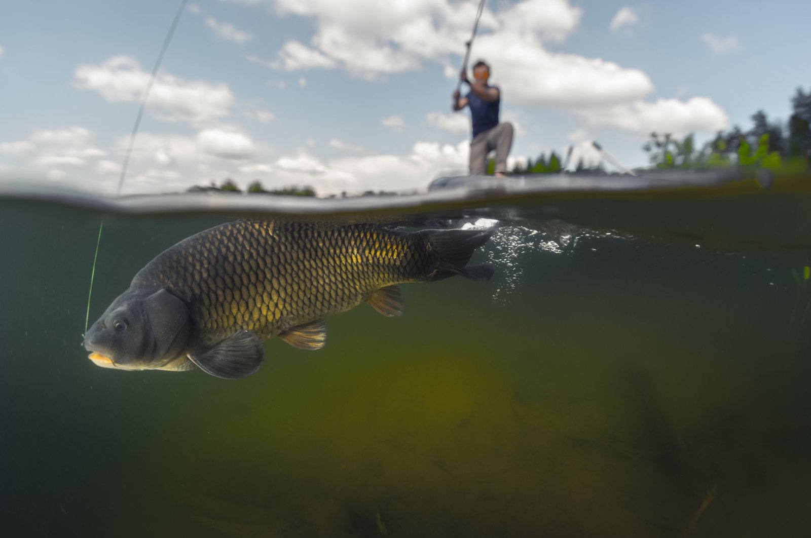 A split shot shows an underwater view of a fish biting the bait of a man fishing on a lake. (Shutterstock Photo)