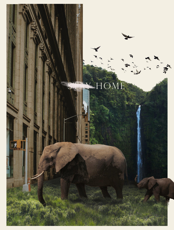 "Ahmet Kutu, ""Healing World,"" digital collage, 29.7 by 42 centimeters. (Courtesy of Yunus Emre Institution)"