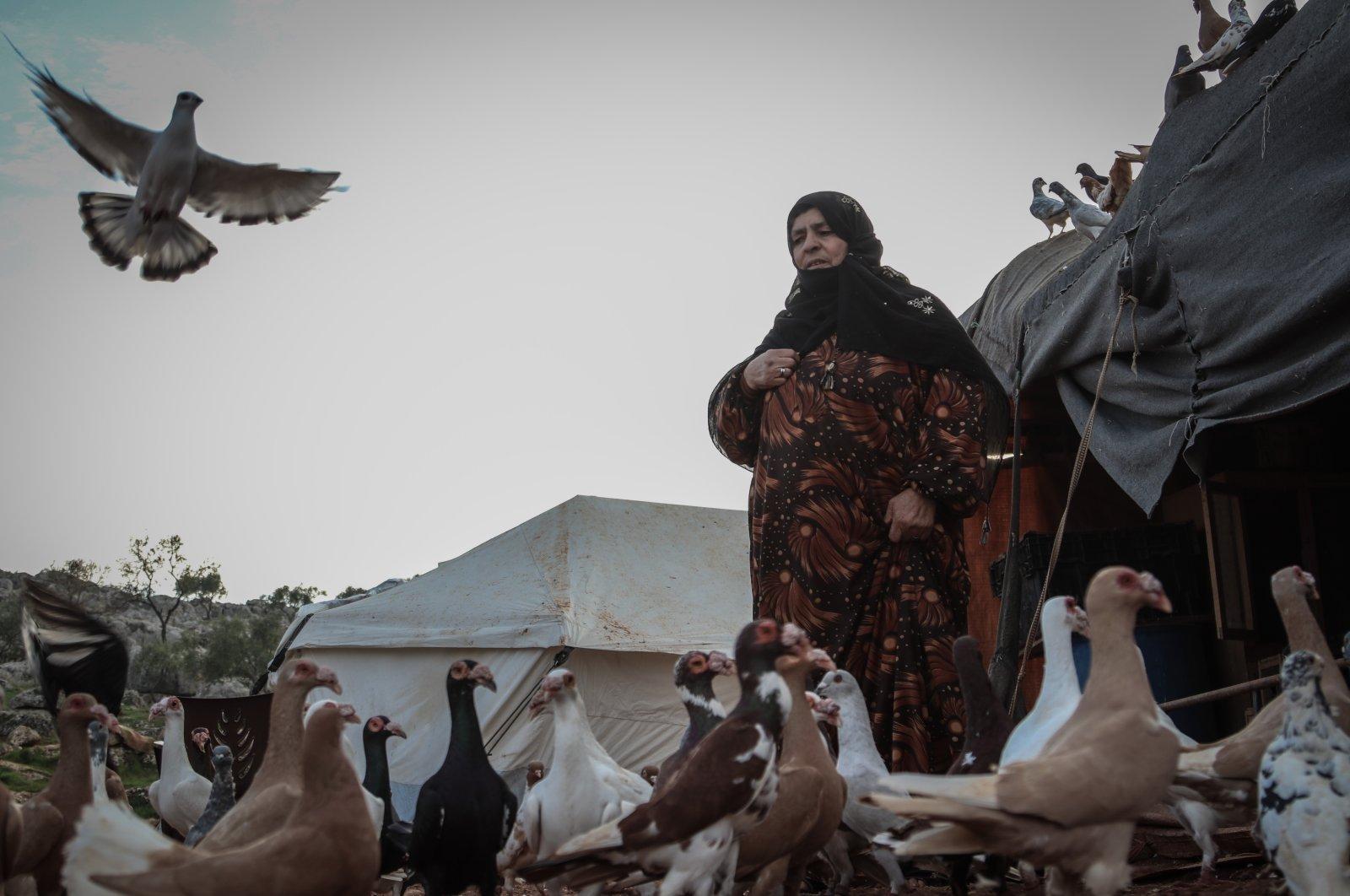 Heyam al-Nehar with her pigeons, Idlib, Syria, March 11, 2021. (AA)