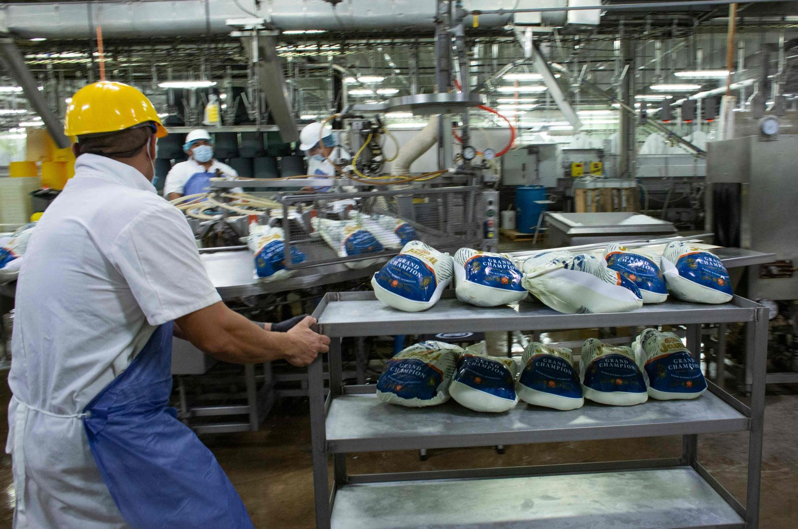 In this file photo taken on November 20, 2020, workers pack turkeys at a farm in Orefield, Pennsylvania, ahead of the Thanksgiving holiday. (AFP Photo)