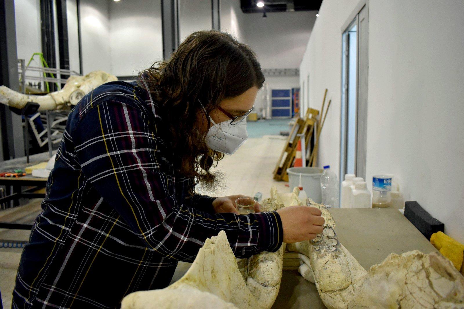 Juha Saarinen works on the elephant skull, Kayseri, central Turkey, March 11, 2021. (AA Photo)