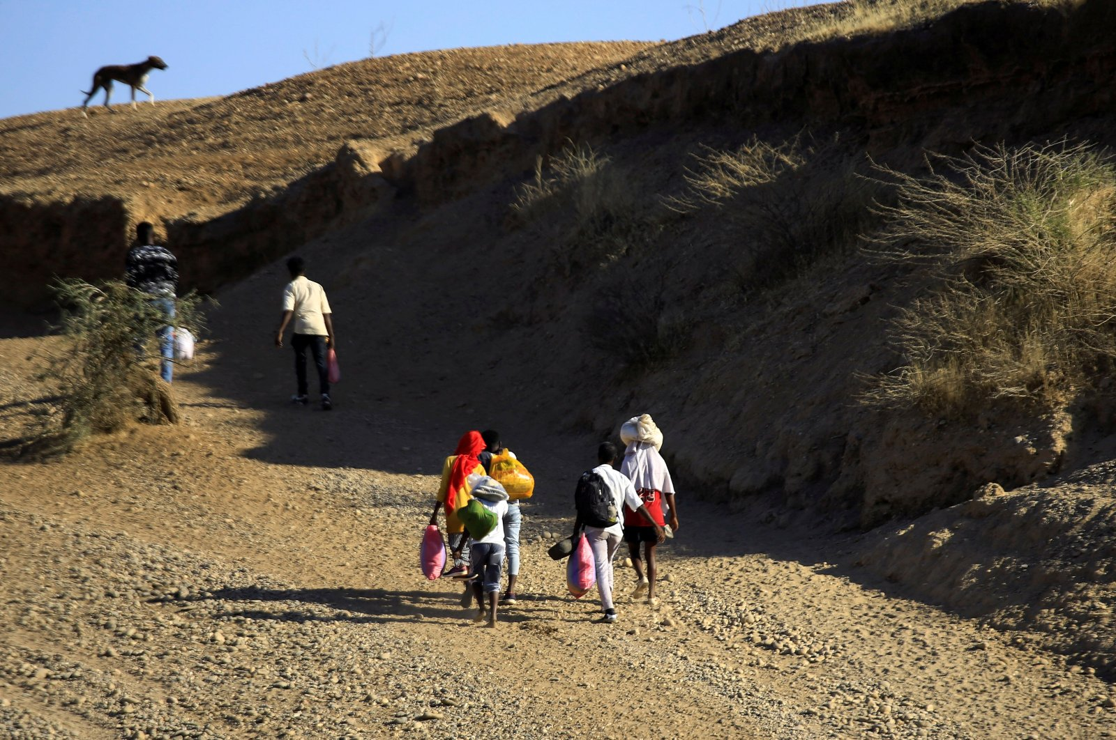 Ethiopians, who fled the ongoing fighting in Tigray region, carry their belongings after crossing the Setit River on the Sudan-Ethiopia border, in the eastern Kassala state, Sudan Dec. 16, 2020. (REUTERS)