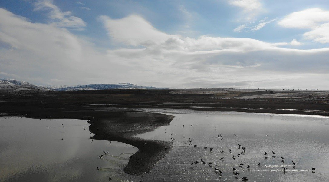 A pond in danger of drought in Tokat province, northern Turkey, March 19, 2021. (IHA Photo)