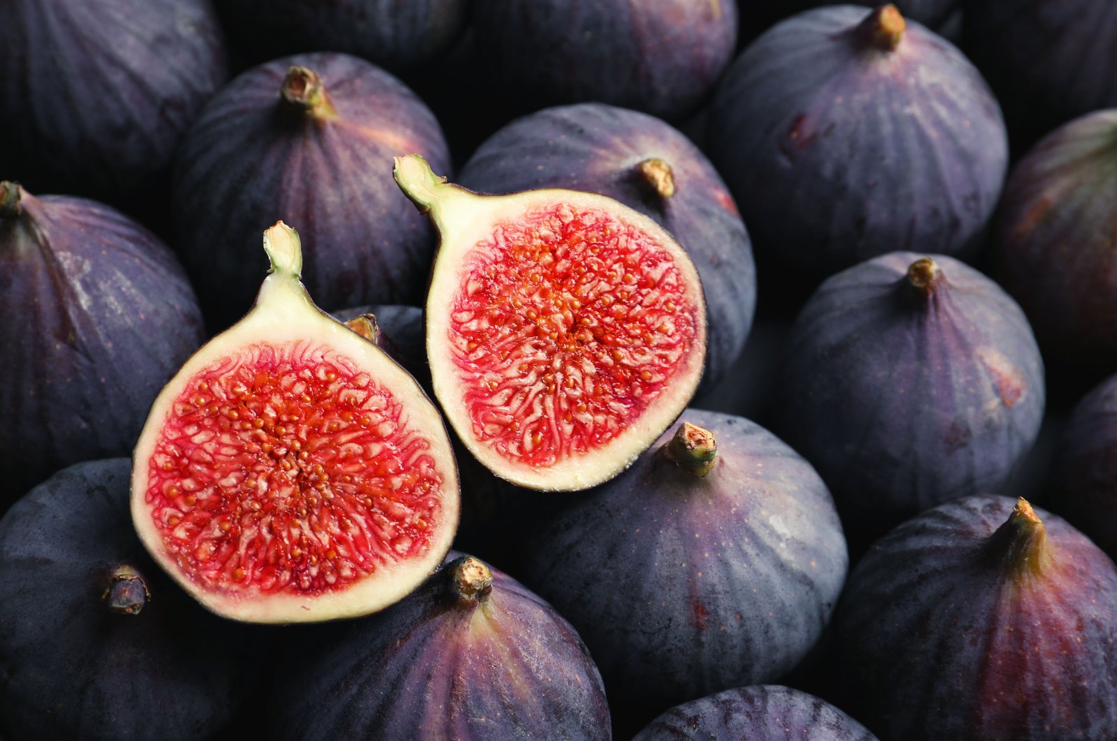 The juicy interior of a fig that has been sliced in half. (Shutterstock Photo)