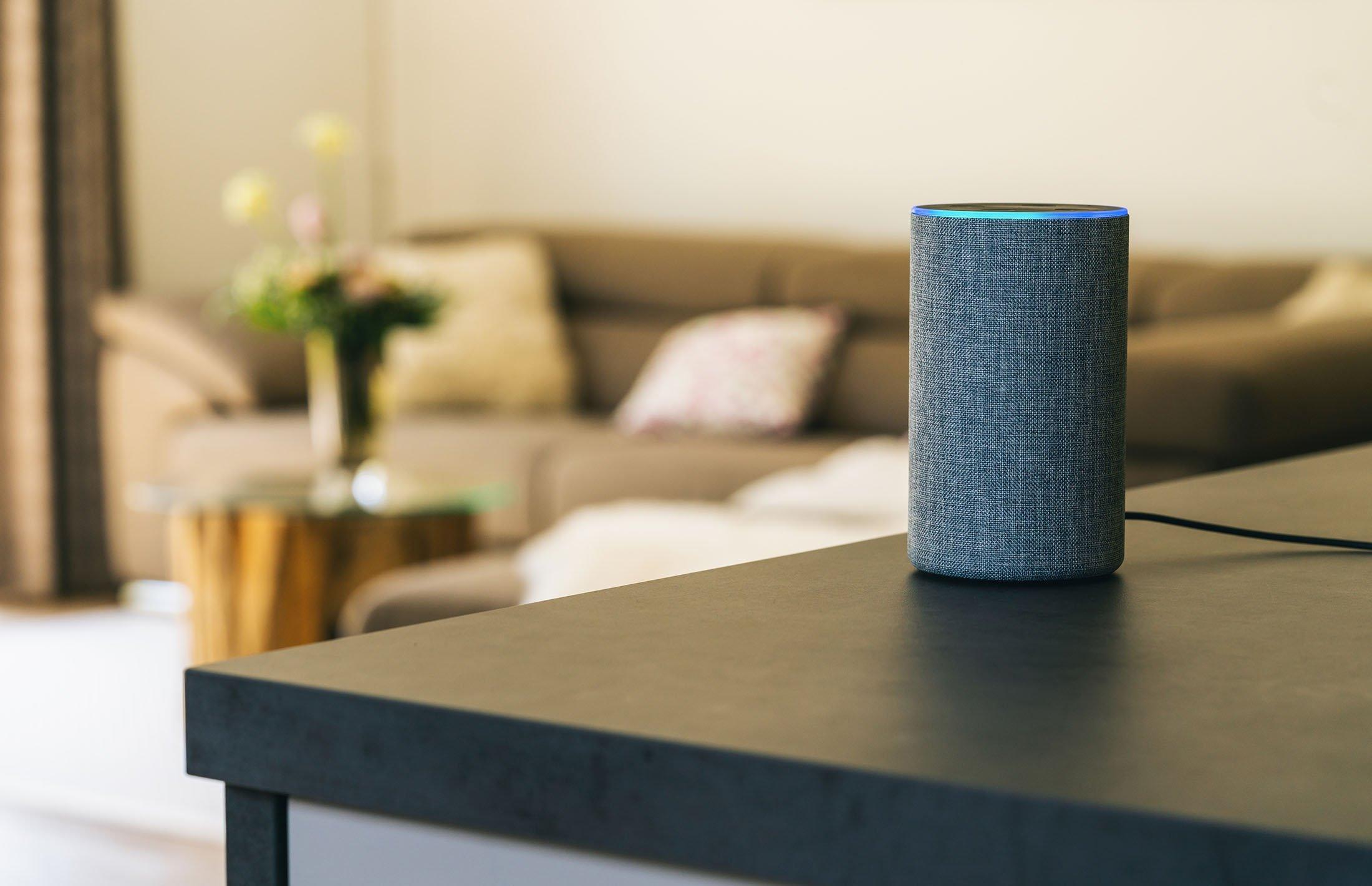 Amazon Echo. (Shutterstock Photo)