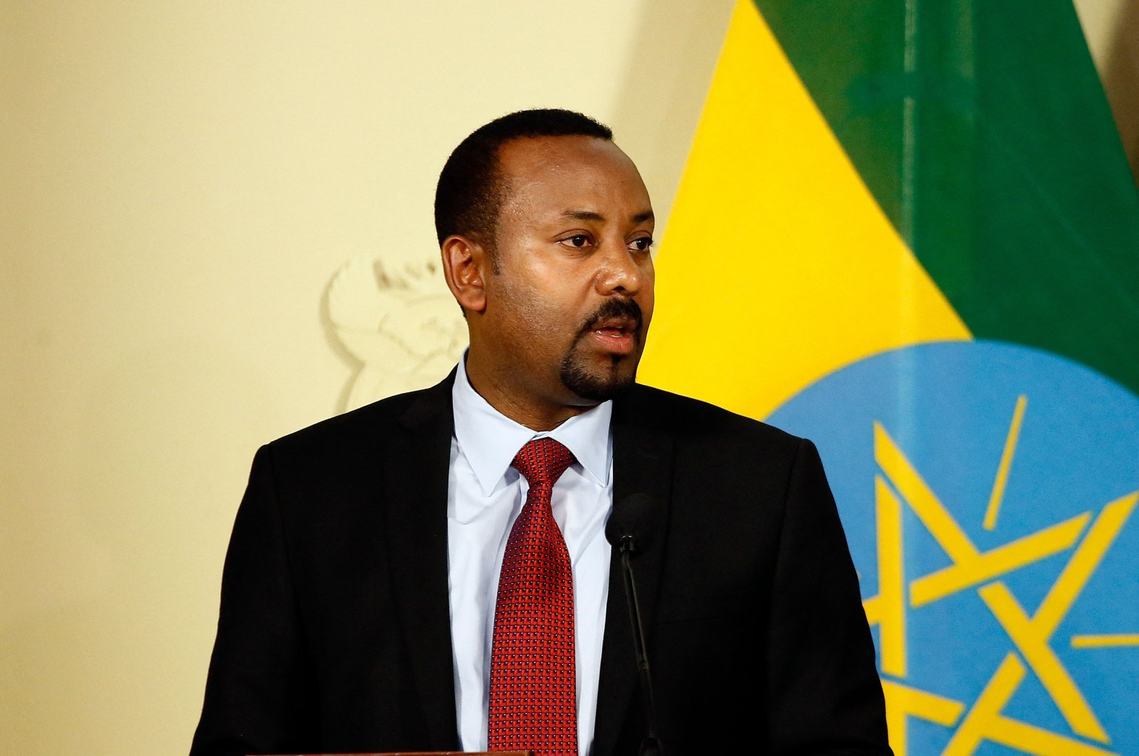 Prime Minister of Ethiopia Abiy Ahmed Ali speaks during a press conference with the South African president at the Union Buildings in Pretoria, South Africa, Jan. 12, 2020. (AFP Photo)