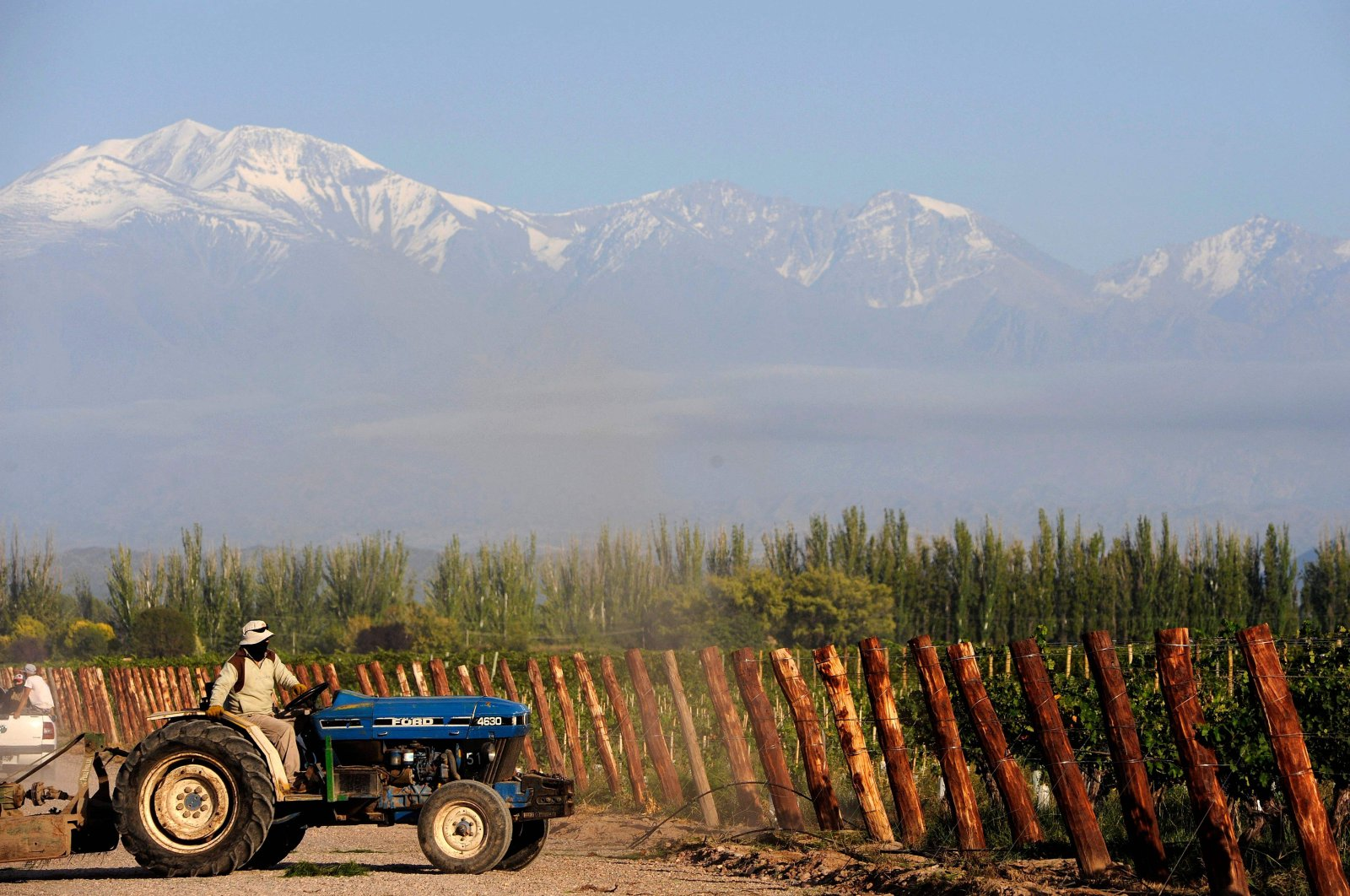 A man works on a tractor at the vineyards of the Catena Zapata winery in Agrelo, Lujan de Cuyo department, Mendoza province, Argentina, March 12, 2021. (AFP Photo)