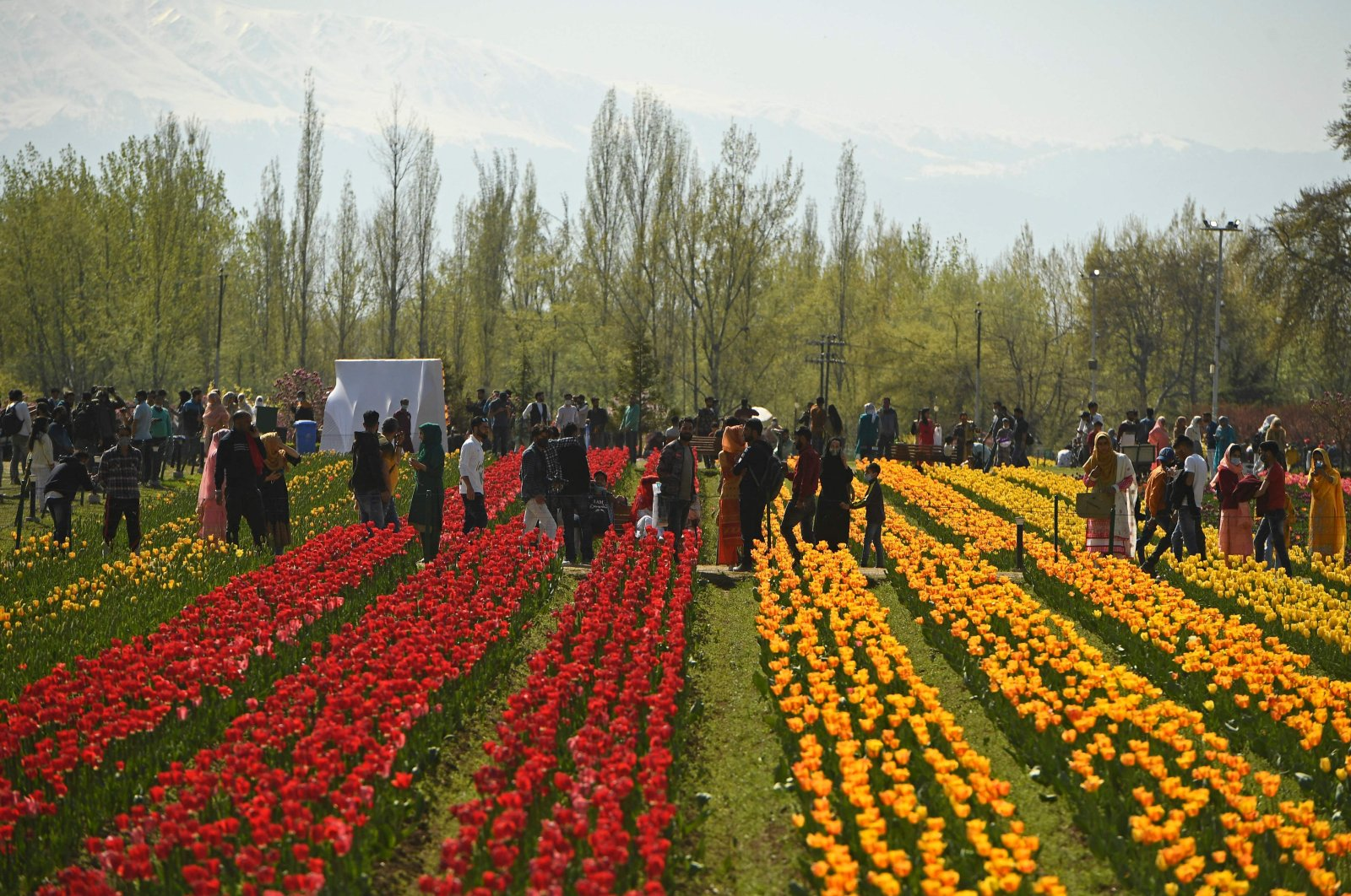 Visitors stroll around the grounds at the inauguration of Tulip festival at the Tulip garden in Srinagar, Kashmir, April 3, 2021. (AFP Photo)