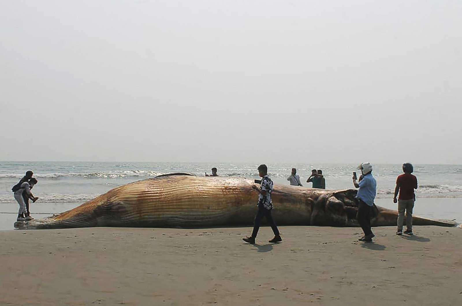 Onlookers stand around a dead whale washed away at a beach in Cox's Bazar, Bangladesh, April 9, 2021. (AFP Photo)