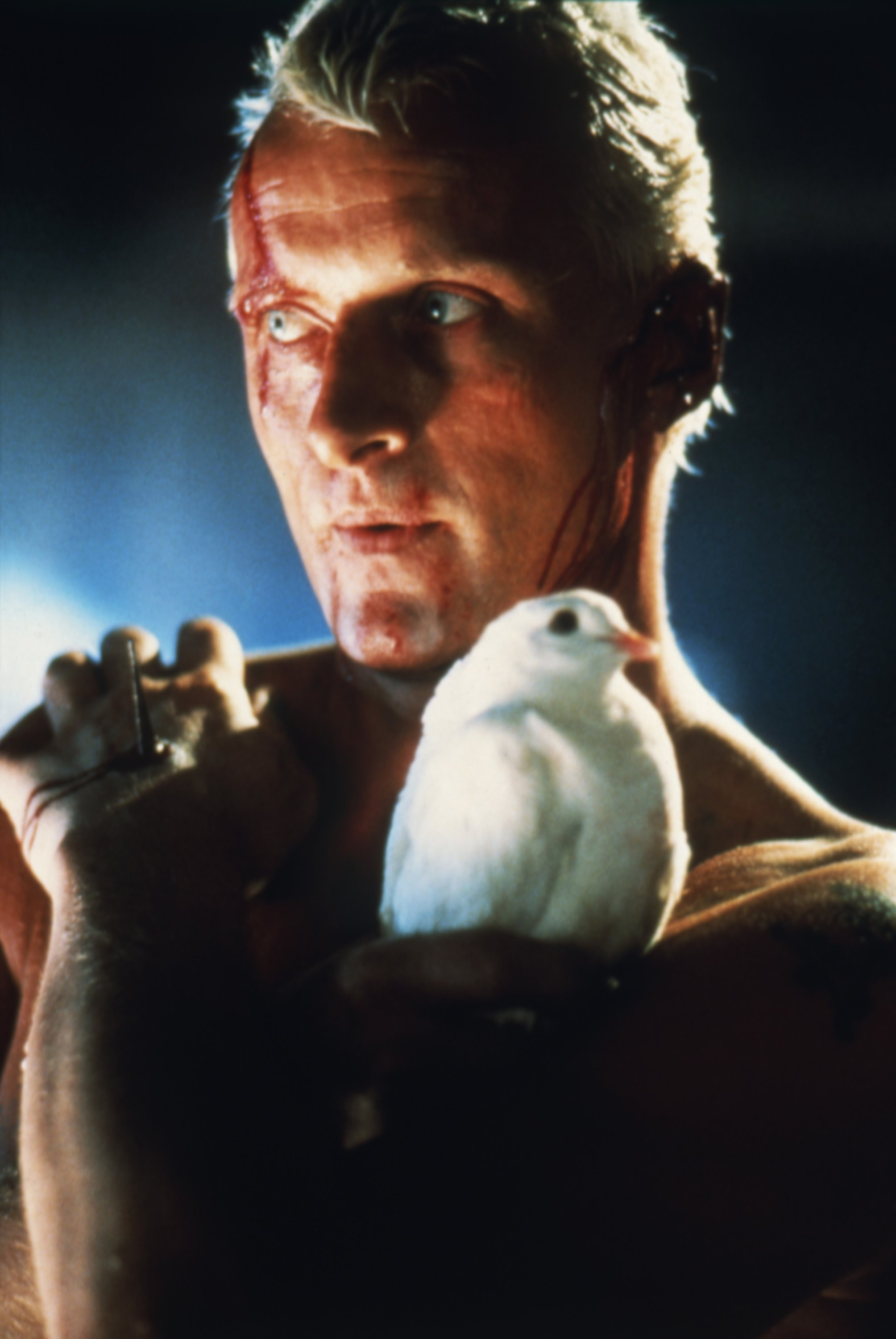 Rutger Hauer on the set of 'Blade Runner', directed by Ridley Scott. (Corbis via Getty Images)
