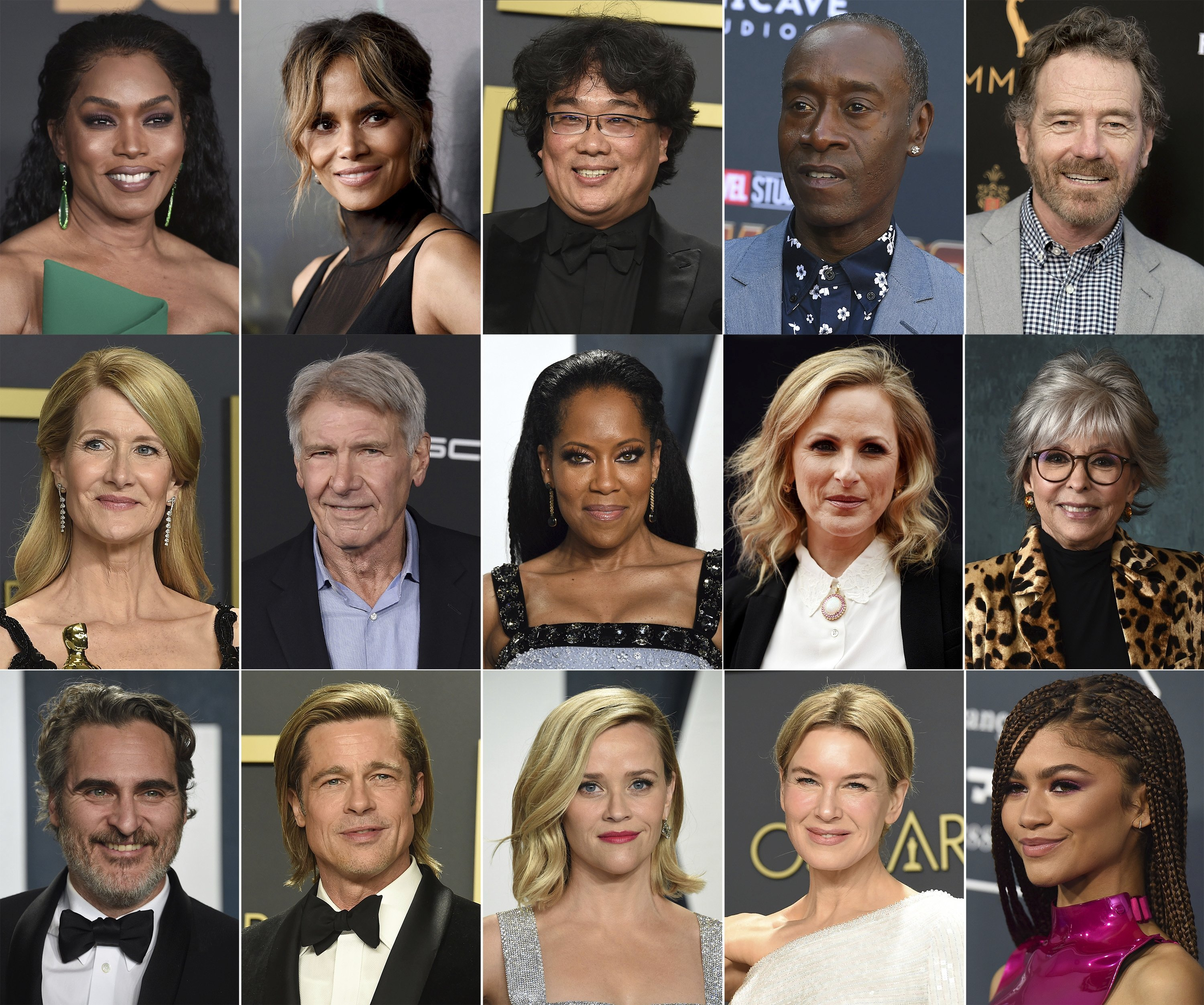 This set of photos (left to right, top to bottom) shows Angela Bassett, Halle Berry, Bong Joon Ho, Don Cheadle and Brian Cranston;  (2nd row) Laura Dern, Harrison Ford, Regina King, Marley Matlin, and Rita Moreno;  (Third grade) Joaquin Phoenix, Brad Pitt, Reese Witherspoon, Renee Zellweger and Zendaya, who will perform at the 93rd Academy Awards on April 25 (AP Photo)
