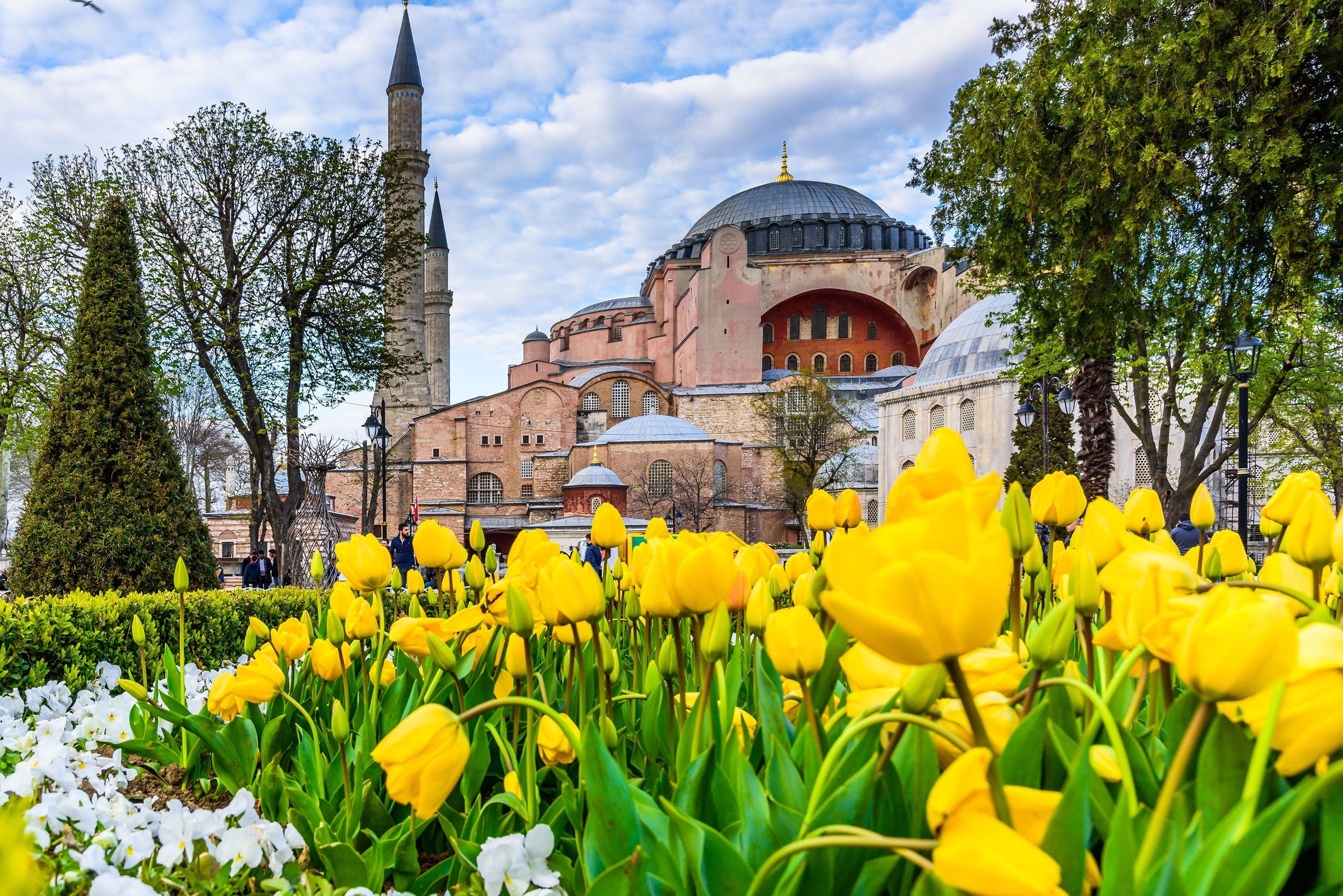 Tulips in Istanbul's Sultanahmet Square with a view of the Hagia Sophia Grand Mosque in the background. (Shutterstock Photo)