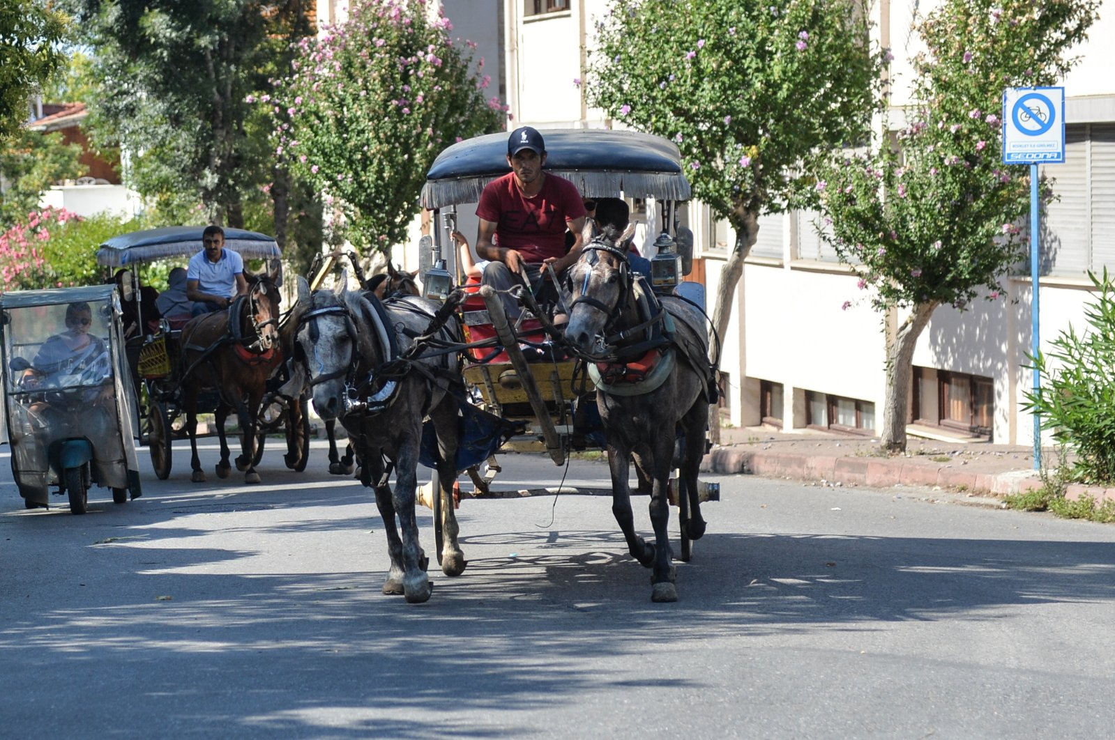 A horse-drawn carriage operates in Büyükada before the ban, in Istanbul, Turkey, Aug. 15, 2019. (DHA PHOTO)
