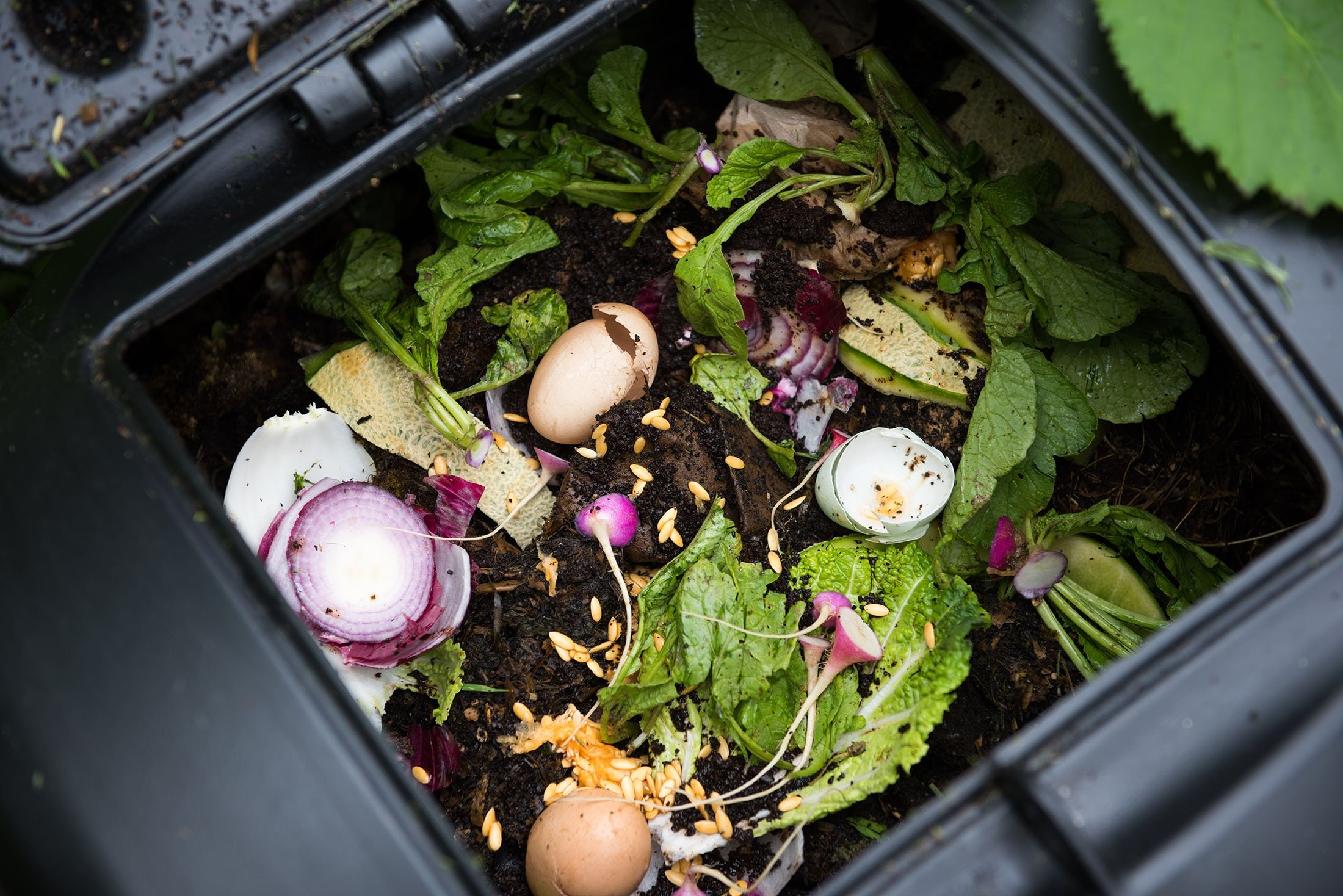 Composting is a great way to make use of your food scraps and grass cuttings. (Shutterstock Photo)