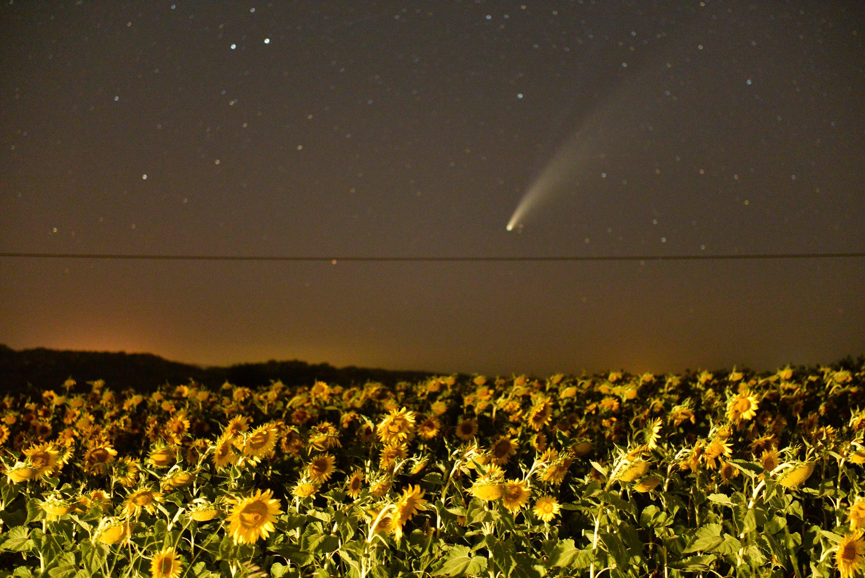 Comet Neowise photographed in Kırklareli.(AA Photo)