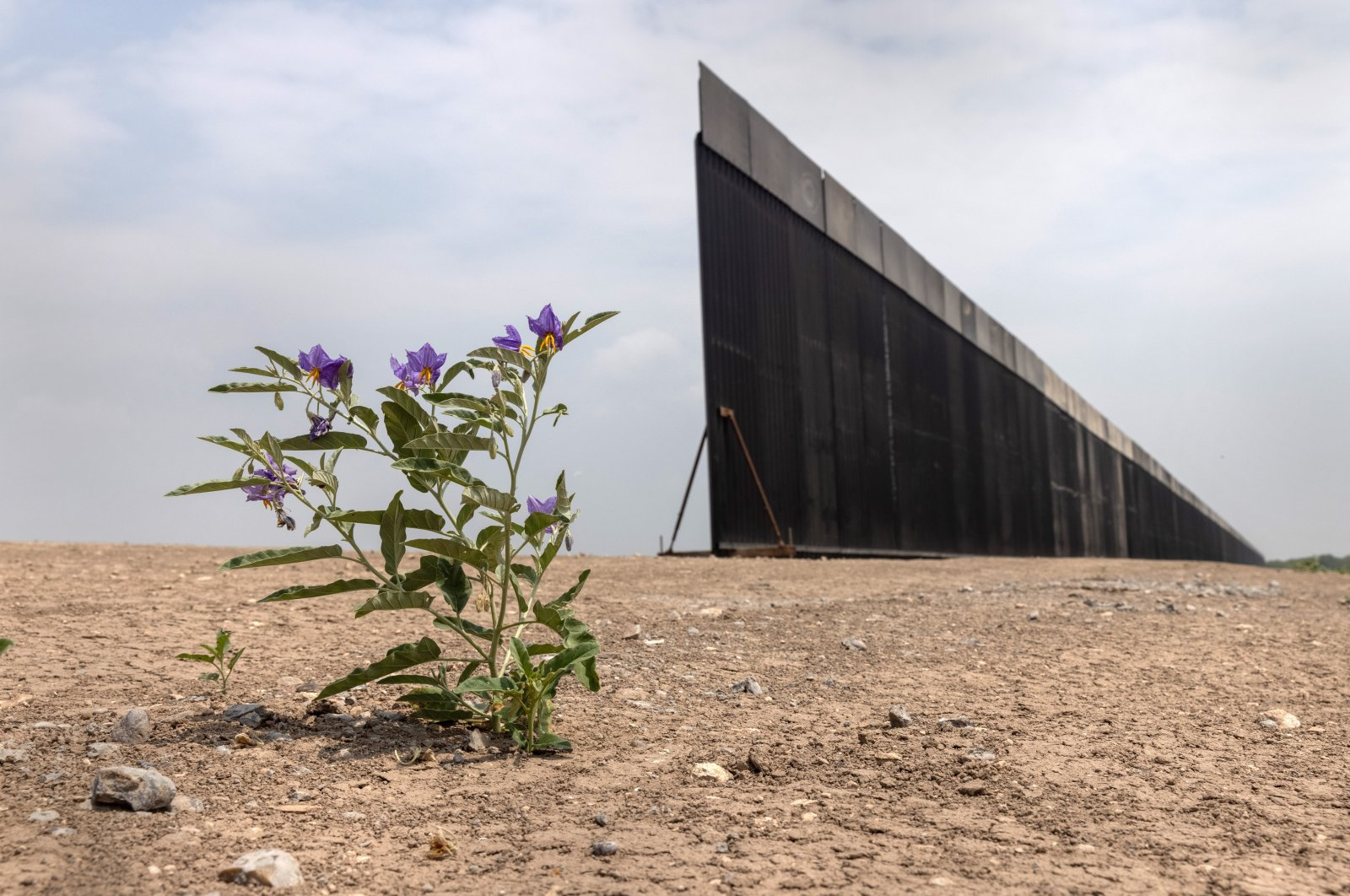 A portion of the U.S.-Mexico border wall stands unfinished, near La Joya, Texas, U.S., April 14, 2021. (Photo by Getty Images)