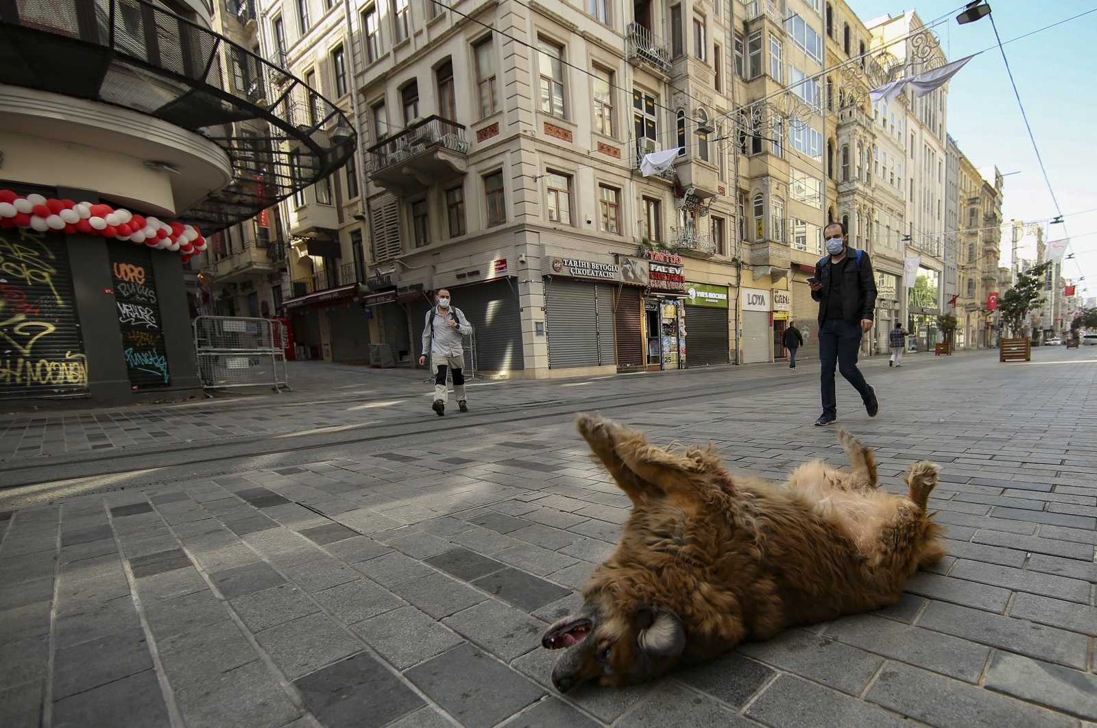 A dog lays on a virtually empty Istiklal Street, in Istanbul, Turkey, April 30, 2021. (AP PHOTO)