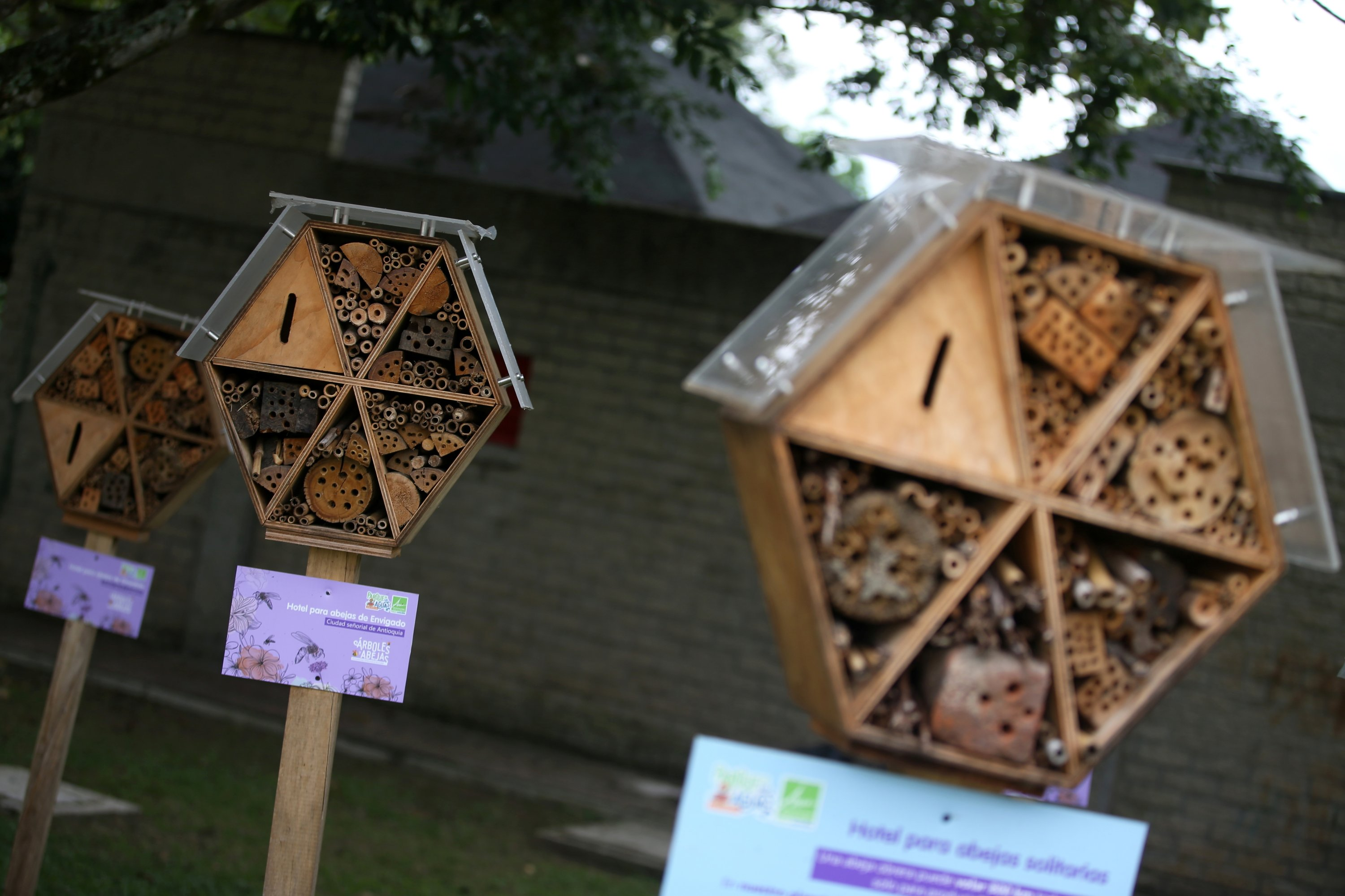 Wooden hotels for solitary bees made by the Metropolitan Area of the Aburra Valley (AMVA) are seen inside the Water Park in Barbosa, Colombia, April 21, 2021. (Reuters Photo)