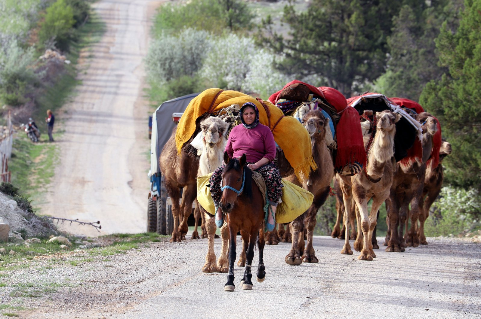 Nomads and their flock head to cooler plateaus in the Konya and Karaman districts for the summer season, Mersin, Turkey, May 4, 2021. (DHA Photo)