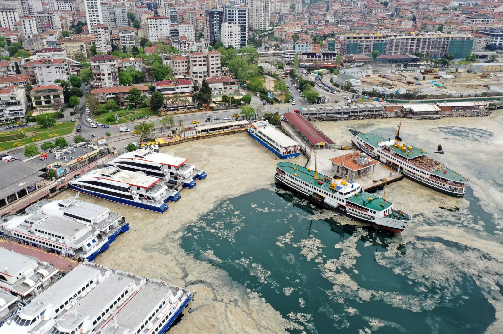 A view of Bostancı coast covered with sea snot, in Istanbul, Turkey, May 9, 2021. (AA PHOTO)