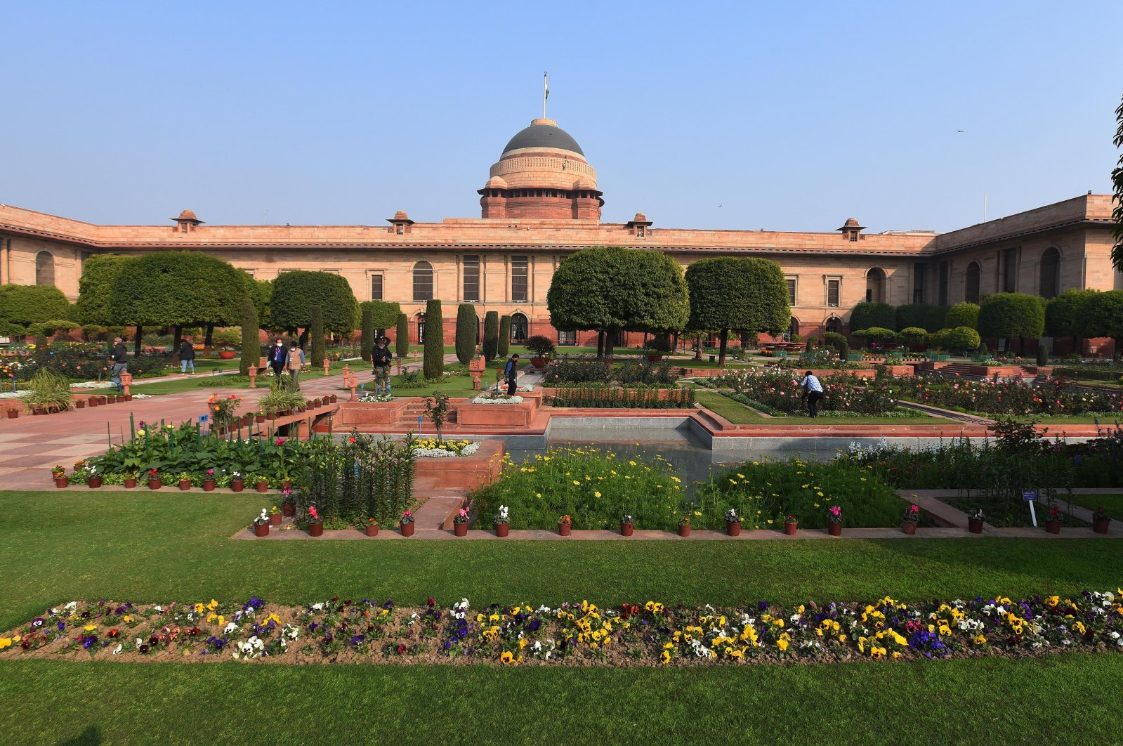Flowers blooming at Mughal Garden of Rashtrapati Bhavan, Kashmir, on February 11, 2021. (Getty Images)