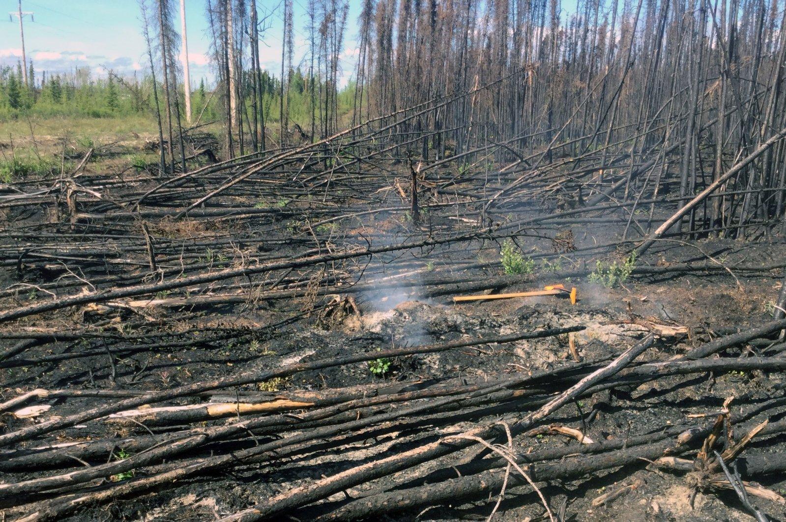Smoke rises from a hot spot in the Swan Lake Fire scar at the Kenai National Wildlife Refuge, Alaska, U.S., June 16, 2020. (Reuters Photo)