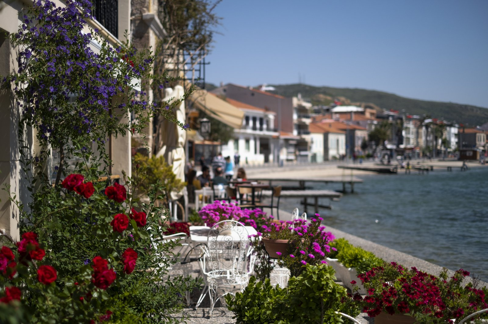 This undated file photo shows a cafe's garden full of flowers in the coastal district of Foça in Izmir, western Turkey. (iStock Photo)