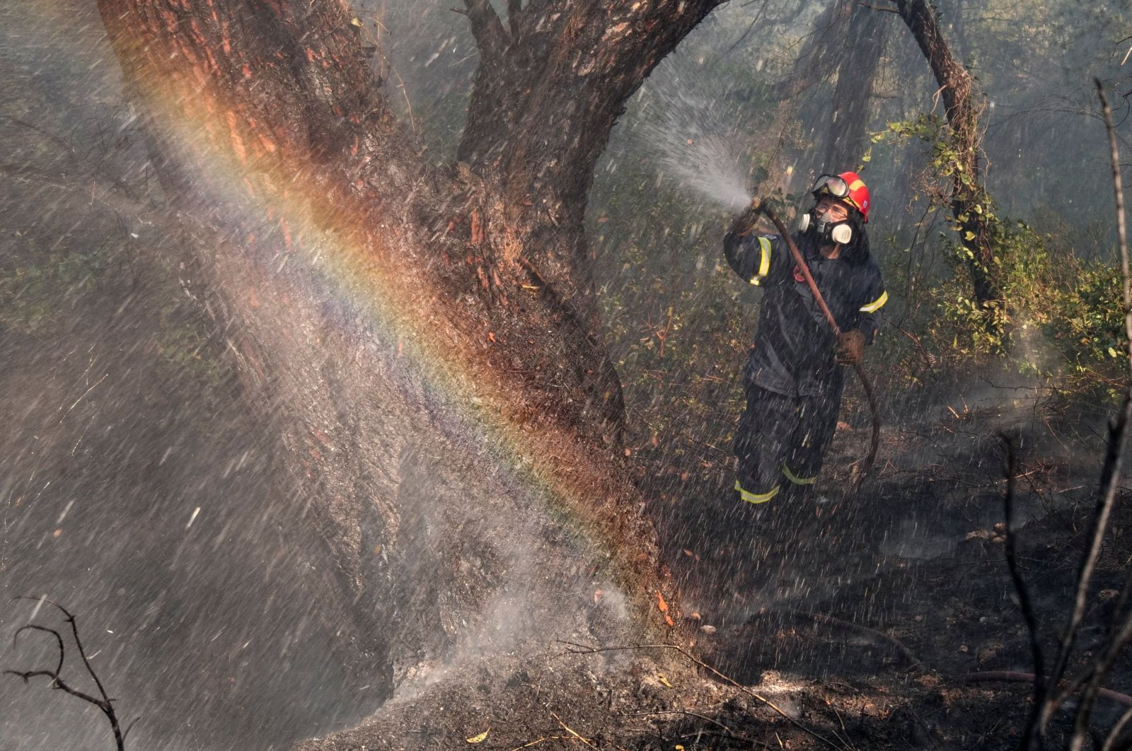 A firefighter tries to extinguish a wildfire burning in the village of Pefkenea, near Corinth, Greece, May 21, 2021. (Reuters Photo)